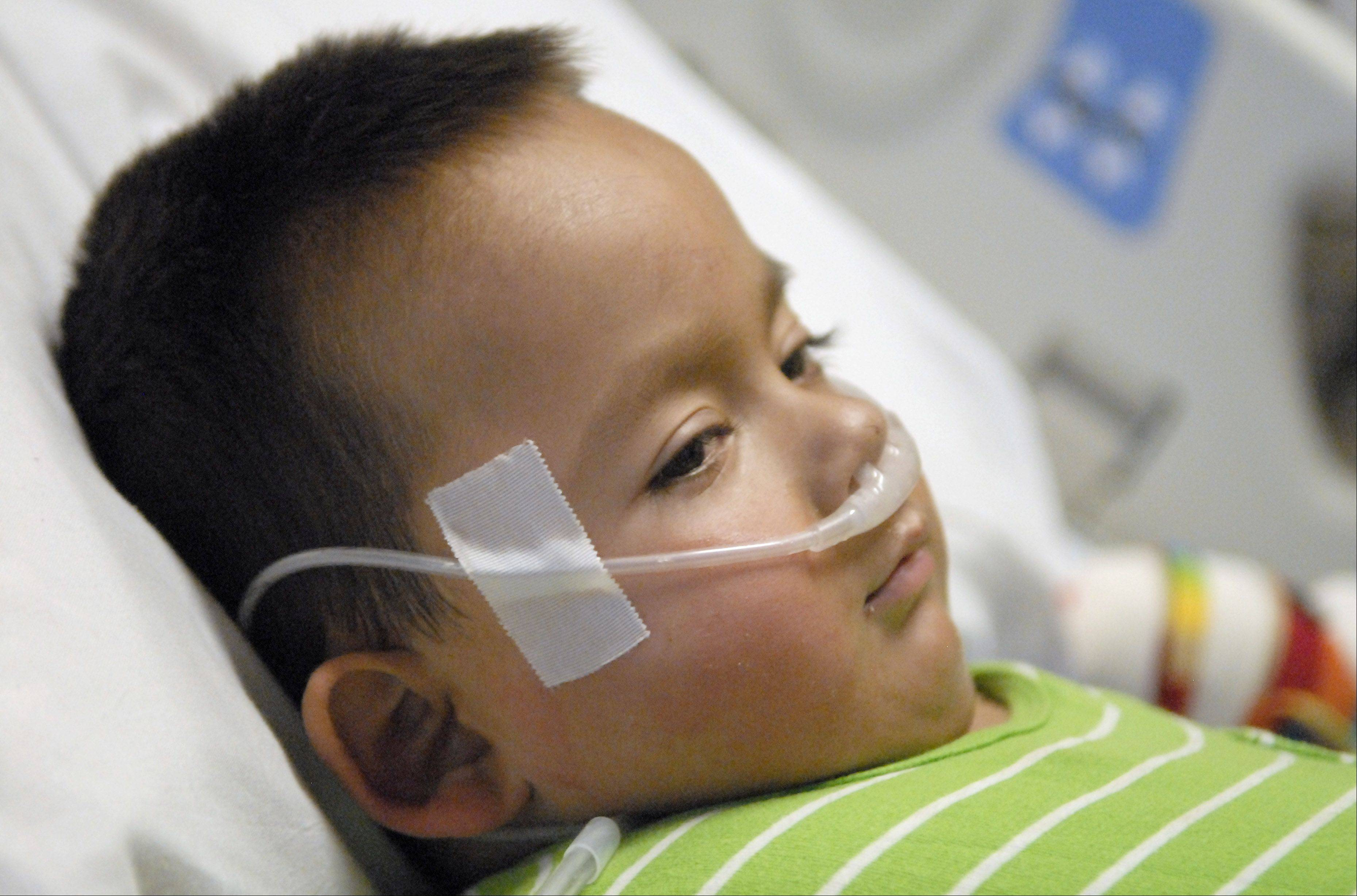 "Nathan Saavedra, 3, of Carpentersville, recovers in his room at Lurie Children's Hospital in Chicago. ""He's done amazingly well, he's a complicated case, but I think with a lot of coordination so far, so good,"" said Dr. Amy Bobrowski, Nathan's main doctor at the hospital. ""He's making great progress."""