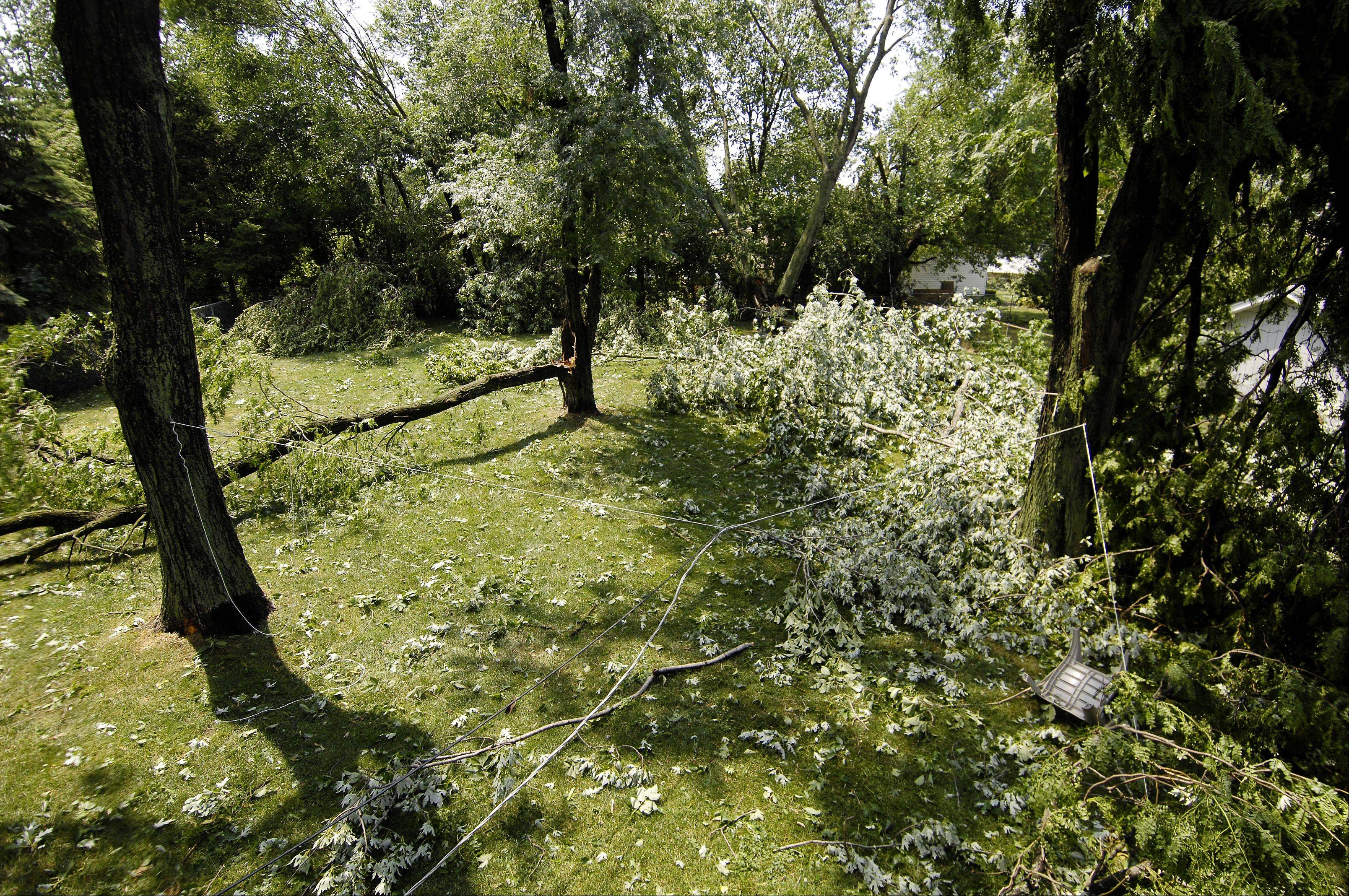 The backyard of the Roloff family in unincorporated DuPage County near Wheaton suffered storm damage from an afternoon storm rolled through DuPage County, Sunday.