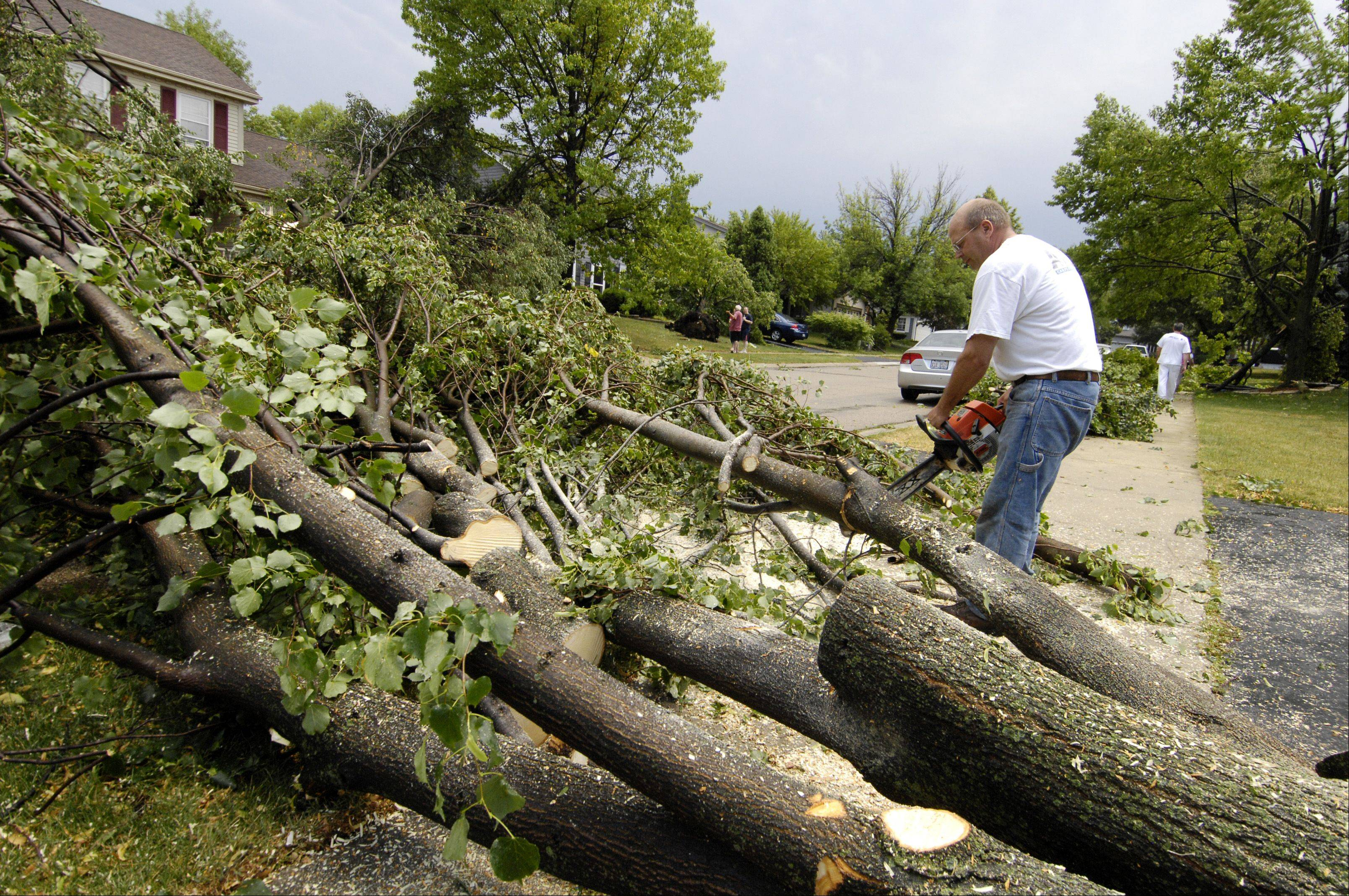 Randy Norback, clears a downed tree in front of his Winfield home after an afternoon storm rolled through DuPage County, Sunday.