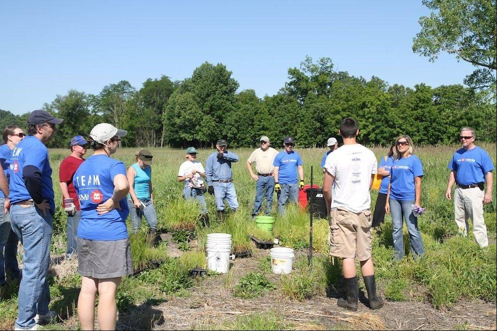 BMO Harris volunteers get an overview of the work to be done at Flint Creek Savanna by Citizens for Conservation workers. BMO Harris volunteers donated over 56 hours of community service to the nonprofit conservation group.