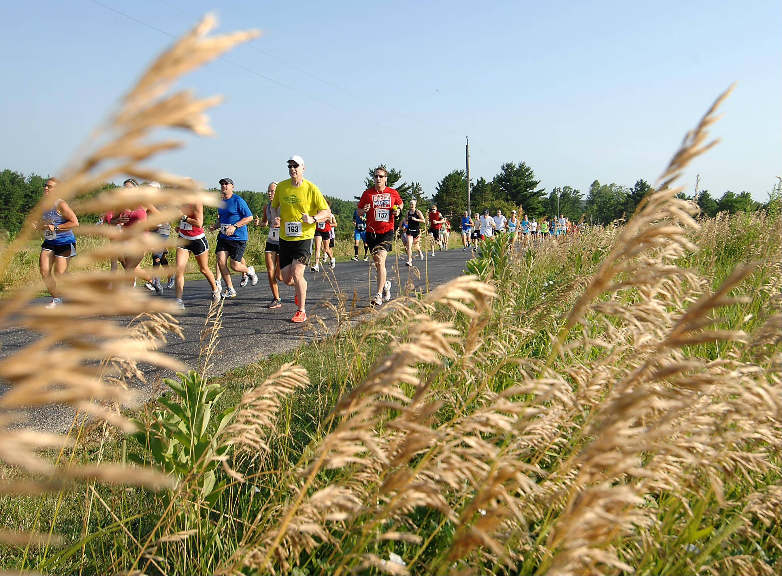 Runners begin The Great Western Freedom 4 road race at LeRoy Oakes Forest Preserve in St. Charles Wednesday morning.