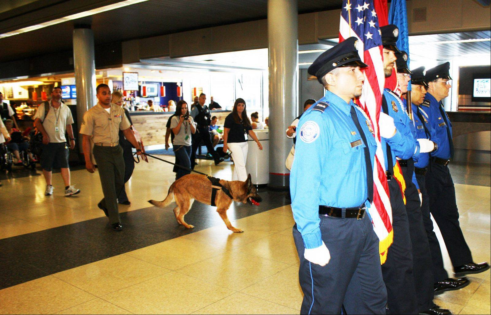 An honor guard escorts Marine Cpl. Juan Rodriguez and retired military dog Lucca through the American Airlines concourse at O'Hare International Airport Thursday.