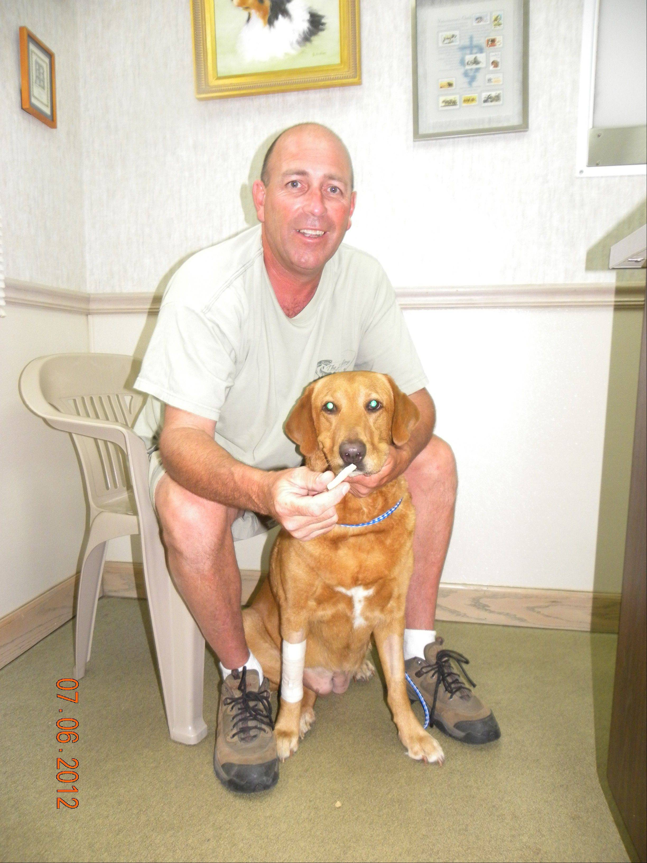 Mark Gennardo is with Honey, the 8-year-old red lab mix he rescued from a stream in Busse Woods. Honey is recovering at Arlington Heights Animal Hospital.