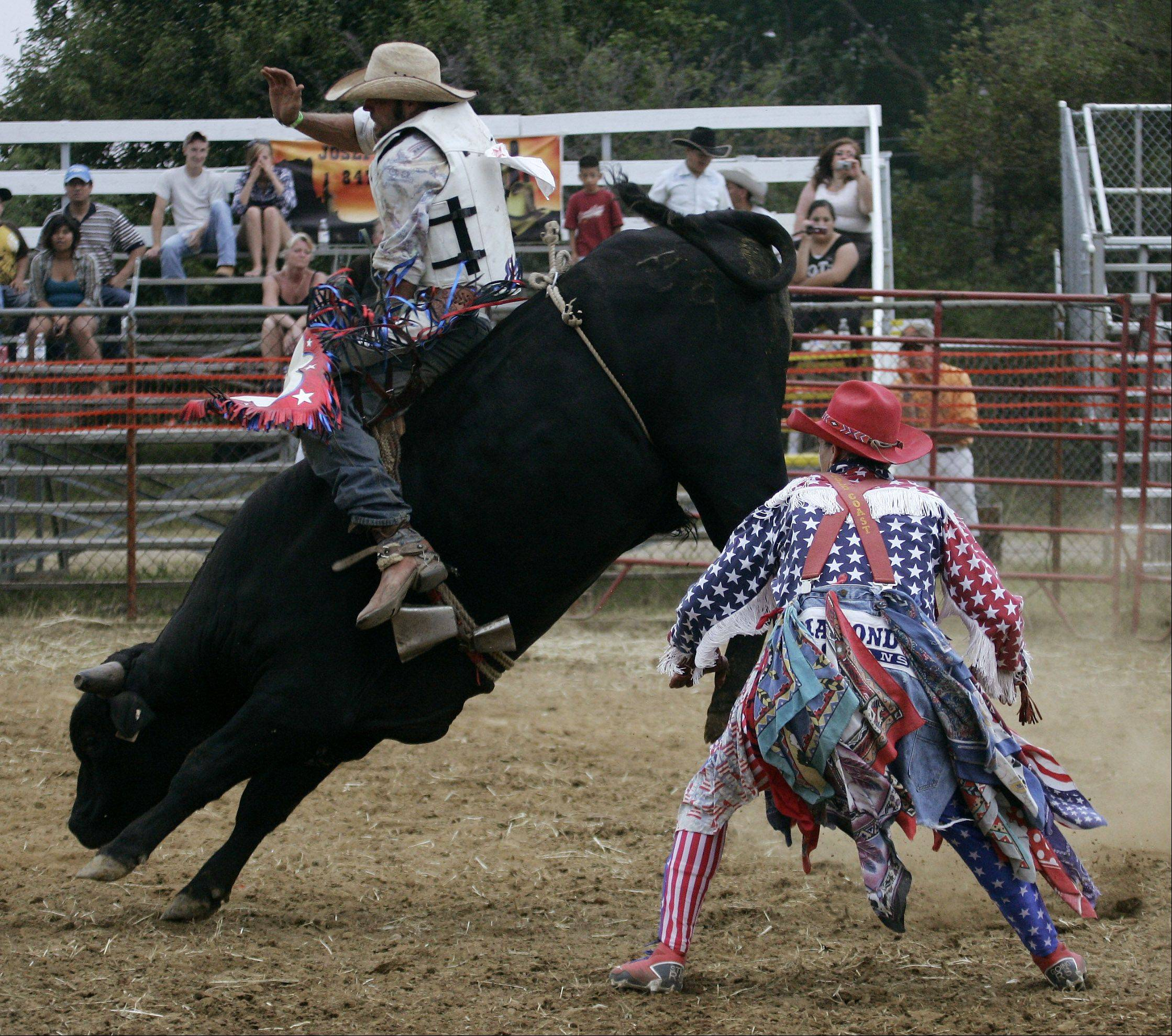 Bullfighter Ray Sikula stands near a bull as it tries to get rid of its rider in the rodeo arena.