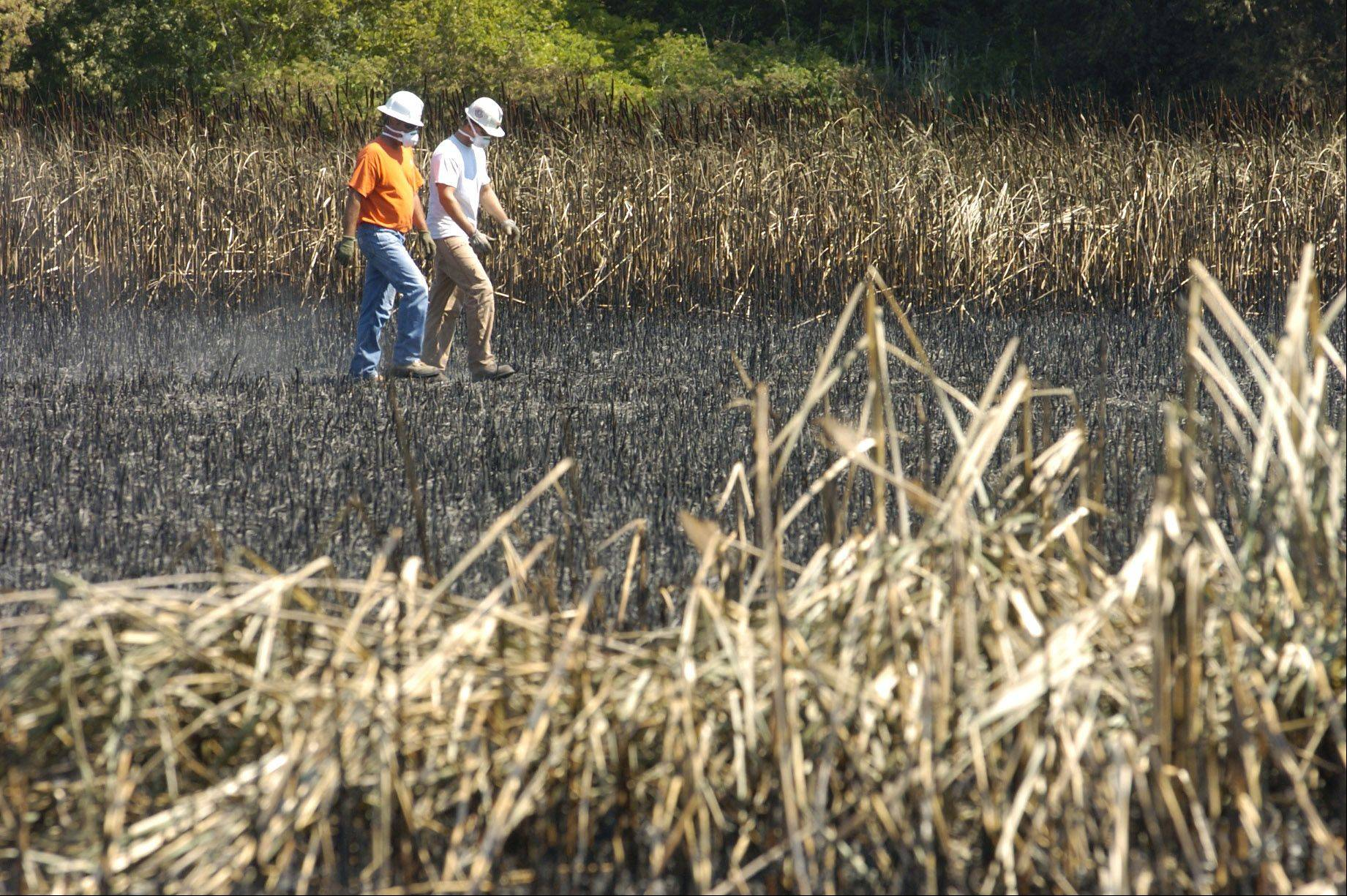 A ComEd crew surveys the damage to the field the day after the Buffalo Grove brush fire.