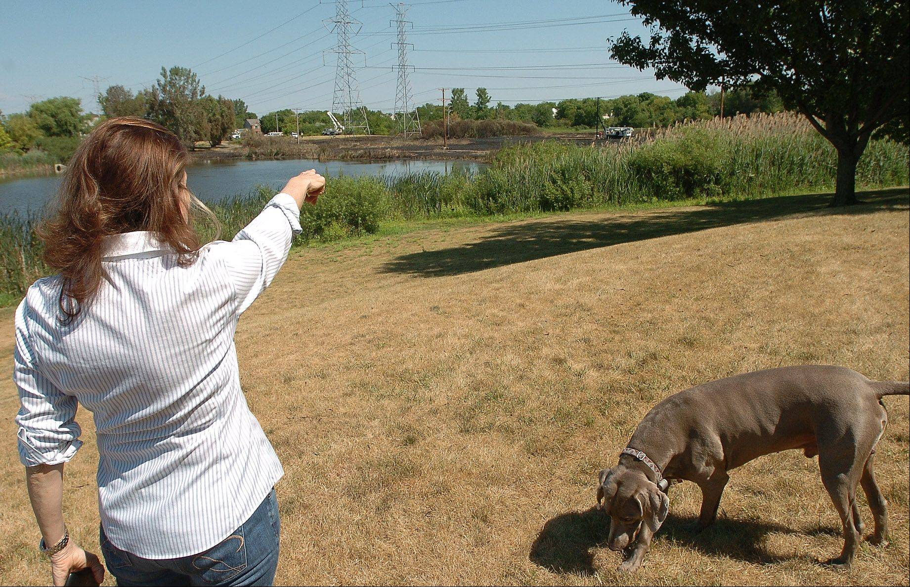 From her backyard, Susan Zerin points to the field where the Buffalo Grove brush fire blazed Sunday.