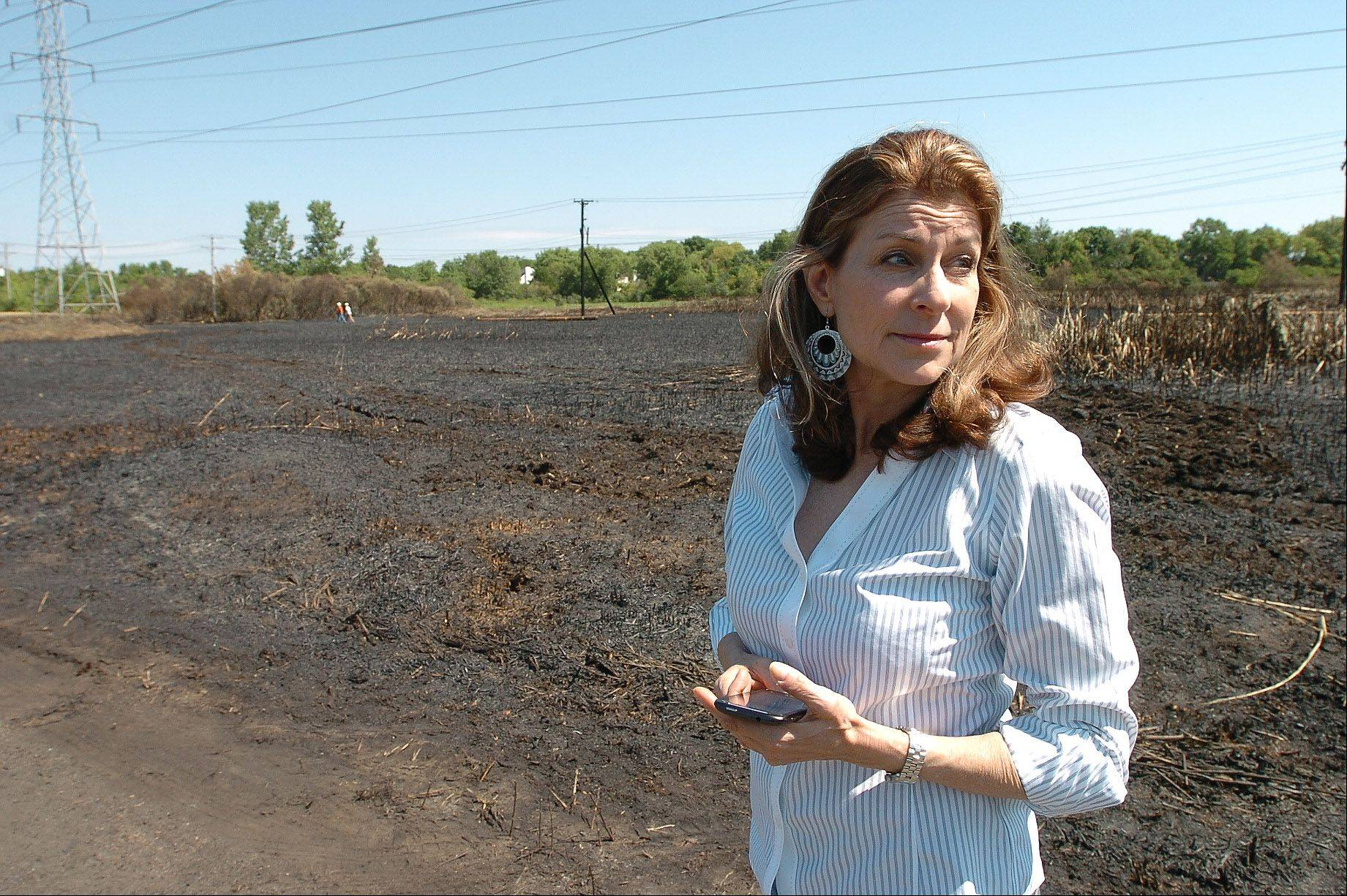 Susan Zerin surveys the damage to a field behind her house from the Buffalo Grove brush fire.