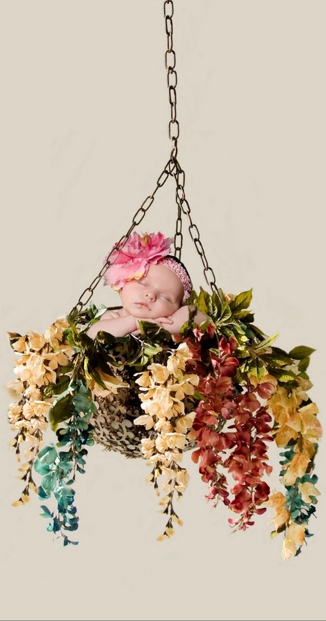 Peyton, whose parents live in Naperville, hangs out in a flower basket.