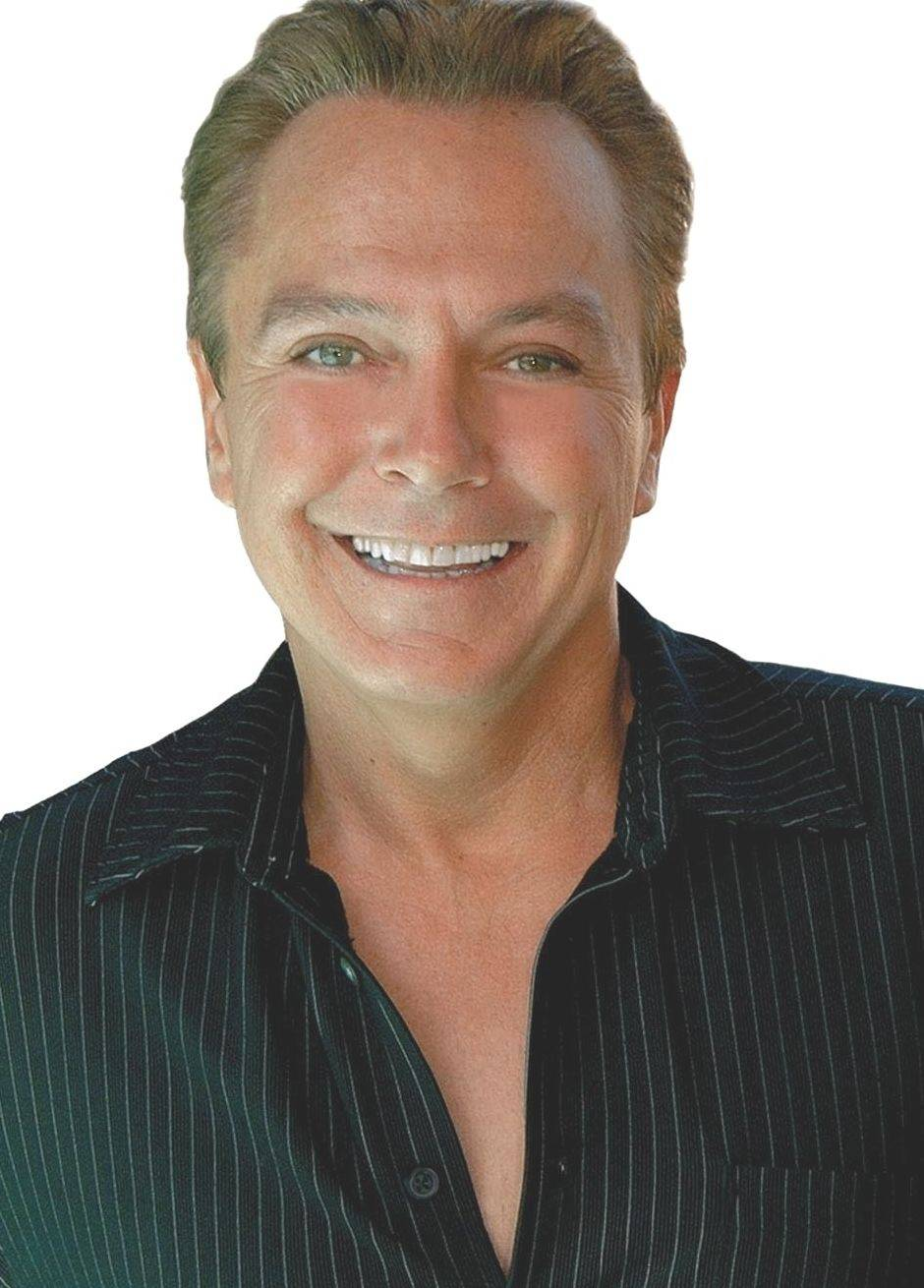 Singer David Cassidy headlines at 9:30 p.m. on Saturday, July 14, at the annual Des Plaines Summer Fling festival.