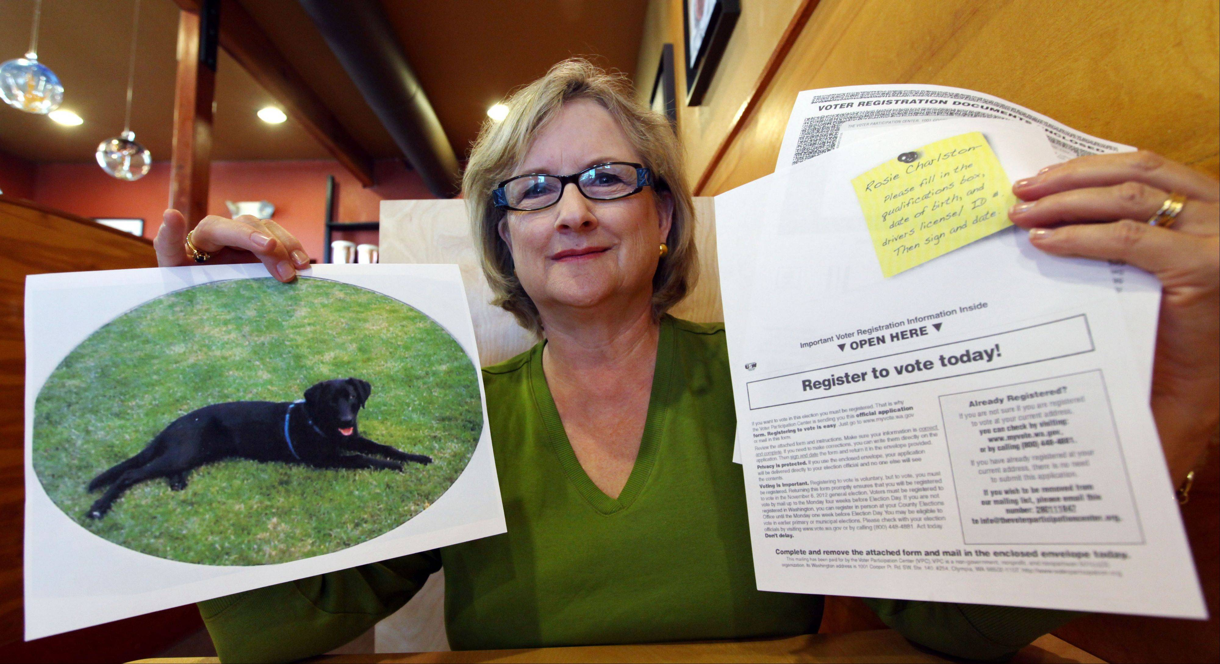 Brenda Charlston holds a photo of her long-deceased dog, Rosie, and a voter registration form for �Rosie Charlston� that arrived in the mail for the canine last month, in Seattle. Rosie was a black lab who died in 1998. A left-leaning group called the Voter Participation Center has touted the distribution of some 5 million registration forms in recent weeks, targeting Democratic voting blocs such as unmarried women, blacks, Latinos and young adults. But residents and election administrators around the country have also reported a series of bizarre and questionable mailings addressed to animals, dead people and people already registered to vote.