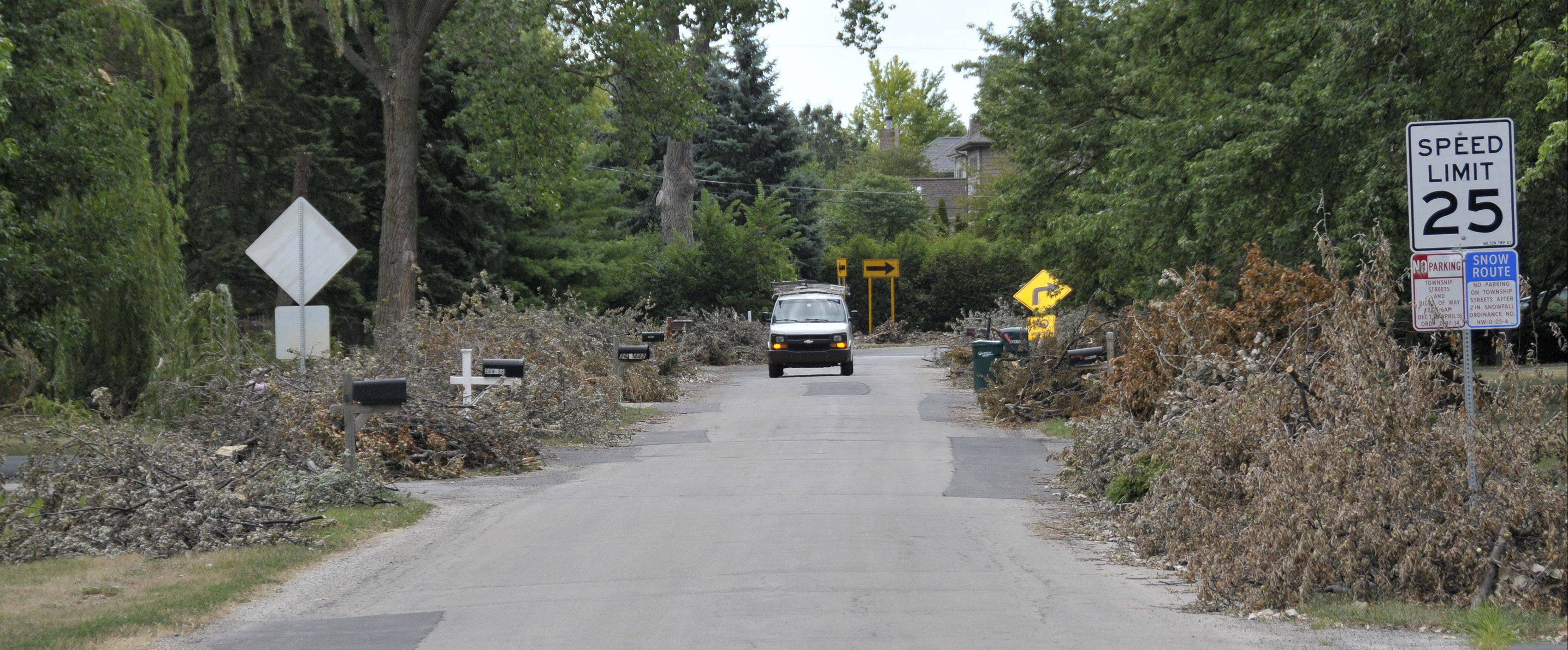 A truck makes its way along National Street in unincorporated Milton Township between Carol Stream and Winfield, while dead wood is piled up lining the streets, waiting to be cleared.