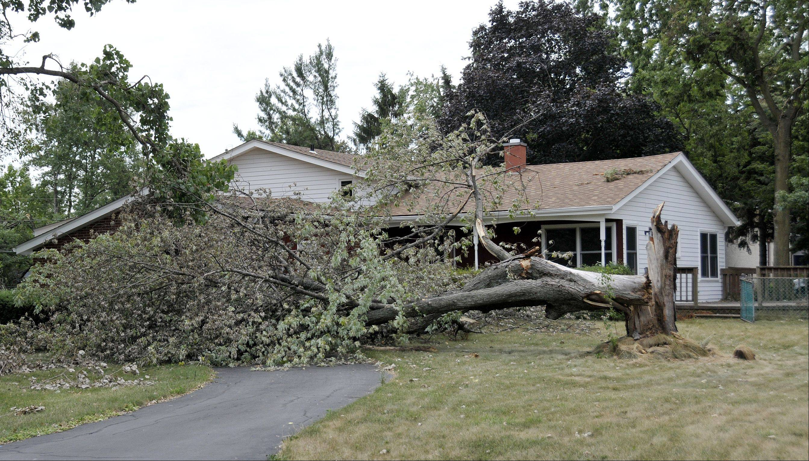 A week after devastating winds blew through an unincorporated area of Milton Township between Carol Stream and Winfield, a downed tree still blocks the driveway of a house at Woods Avenue and National Street.