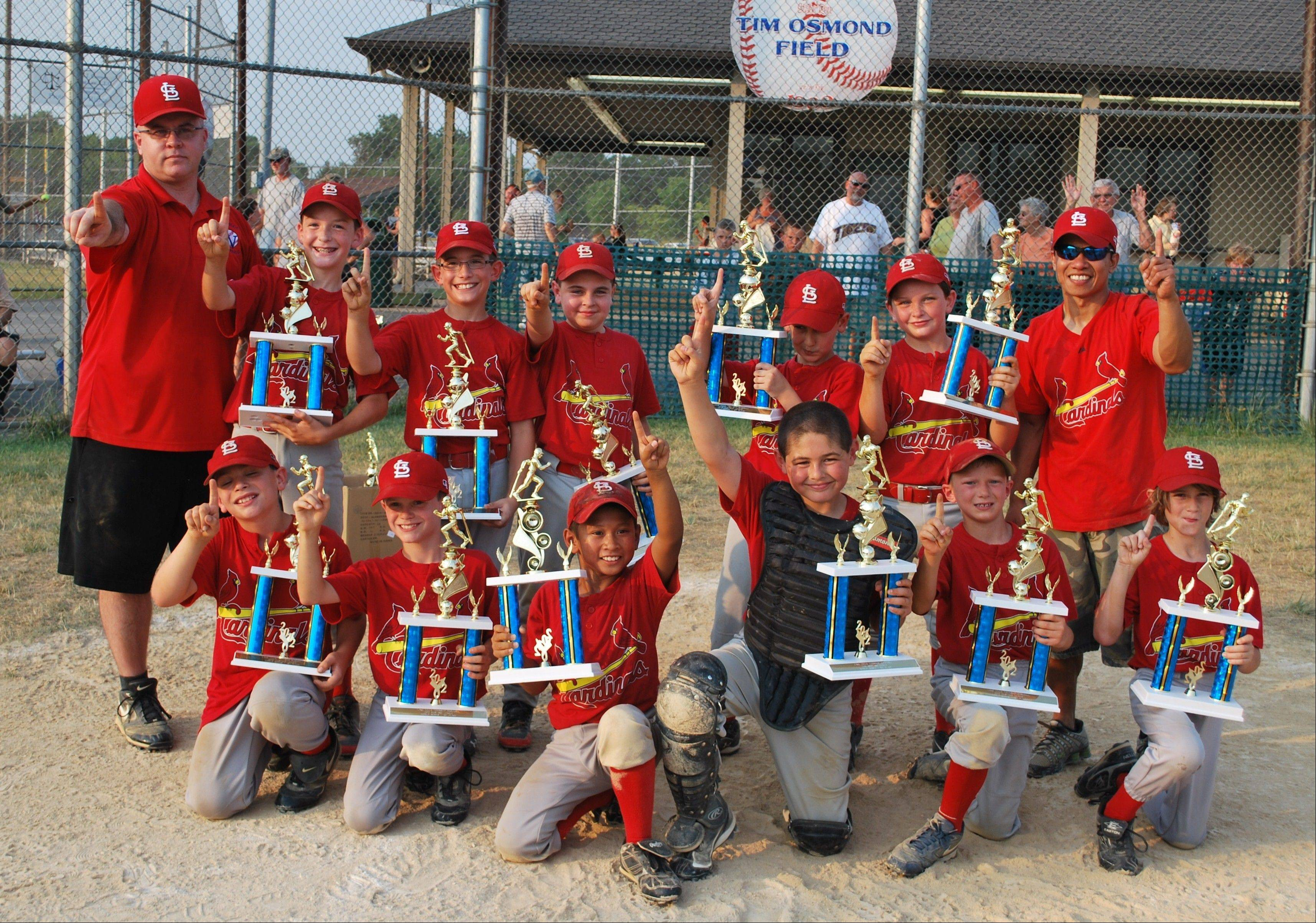 The Lake Villa Township Baseball League Mustang Champions, the Cardinals, from left, back row: coach Mark Zaba, Tyler Donovan, Logan Zielinski, Garrett Zaba, Matthew Fleming, Jimmy Klem and coach Joe Meriel; front row: Aidan Blashe, Sam Inmon, Ryne Meriel, Jake Black-Mishaan, Tyler Bringer and Justin Salinger; not pictured: Evan Zeivel.