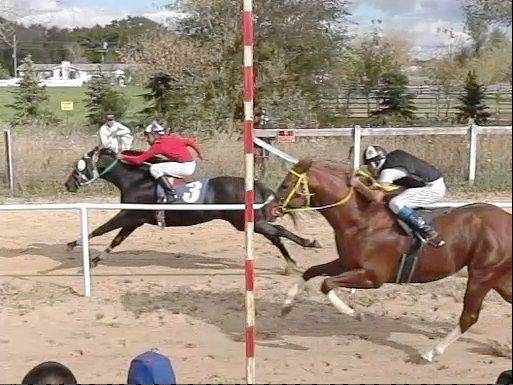 Owners of quarter horses in the Midwest region have come to races at Poker de Ases Ranch and Training Center in Union for more than two years, much to the dismay of several neighbors. The races are banned for a year while officials decide how to regulate horse events through the a new ordinance.
