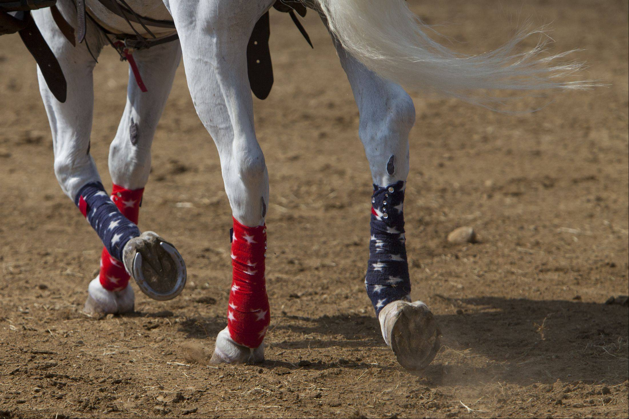 The American horse had decorated hoofs Sunday at the 49th IPRA Championship Rodeo in Wauconda.