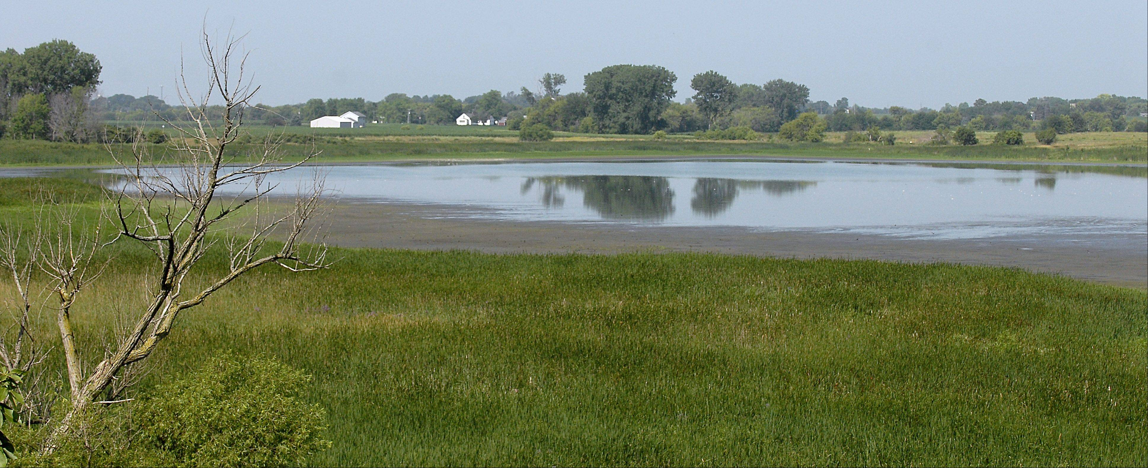 The waters of Nelson Lake Marsh in Batavia have drastically receded during the recent drought.