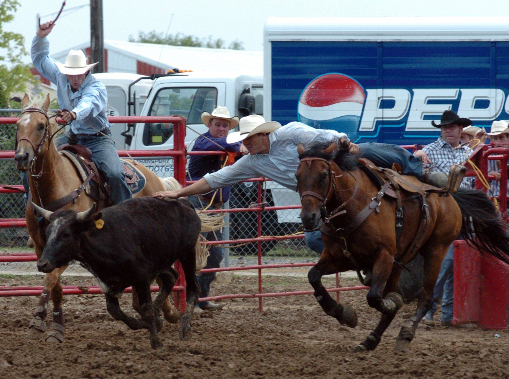 Just Thigpen of Waycross, Ga., competes in the steer wrestling event at the Big Hat Rodeo at last year's Kane County Fair.