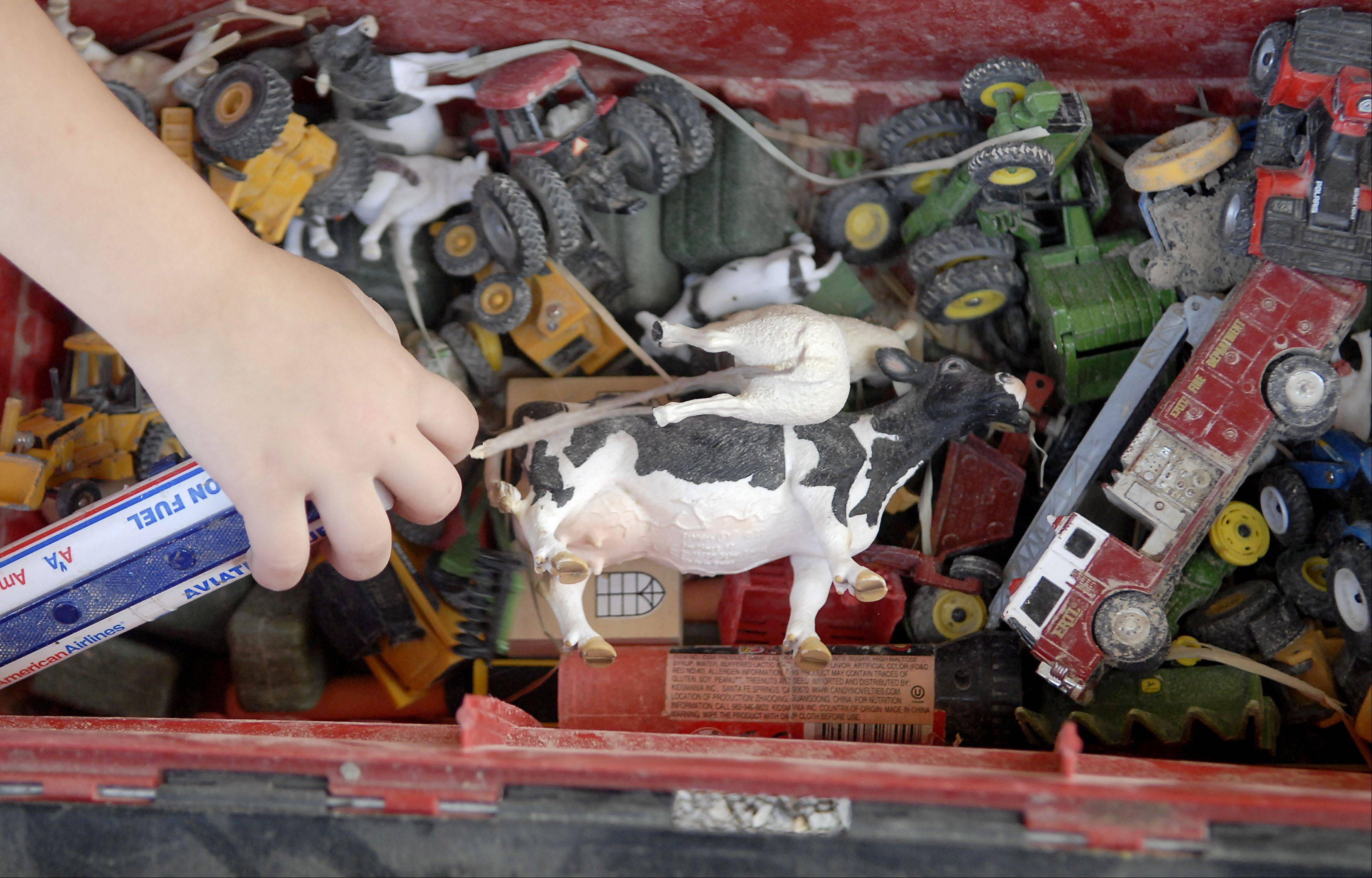 Isabel Stohlquist, 2, of Poplar Grove reaches into a toolbox full of farm machinery toys, a Holstein and a sheep, while family members show dairy cattle during second day of the Kane County Fair on Thursday, July 19.