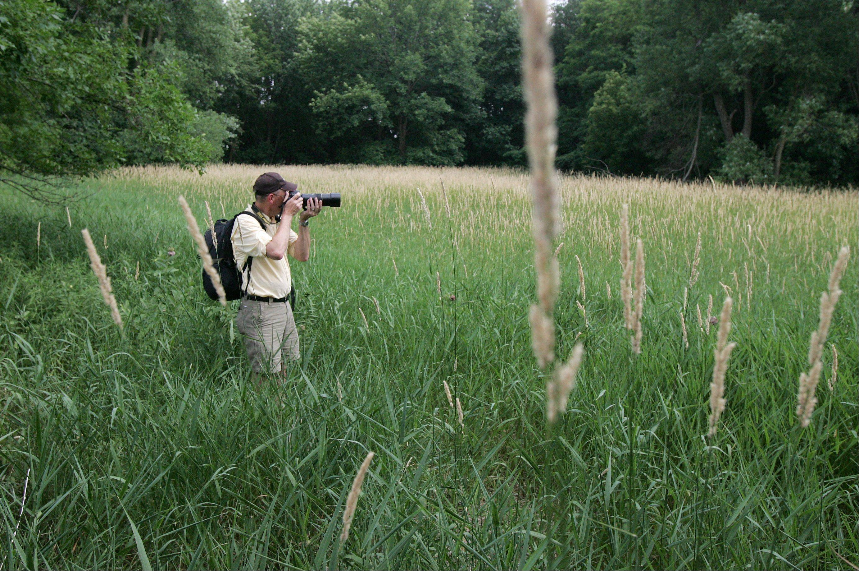 "Dr. Bob Esbensen stops in a field at Deer Grove Forest Preserve in Palatine to take a picture as a bird flies overhead. ""Sometimes they can be here for just a fleeting instant and you have just a very short period of time to get your shot. I like the challenge of that,"" Esbensen explained."