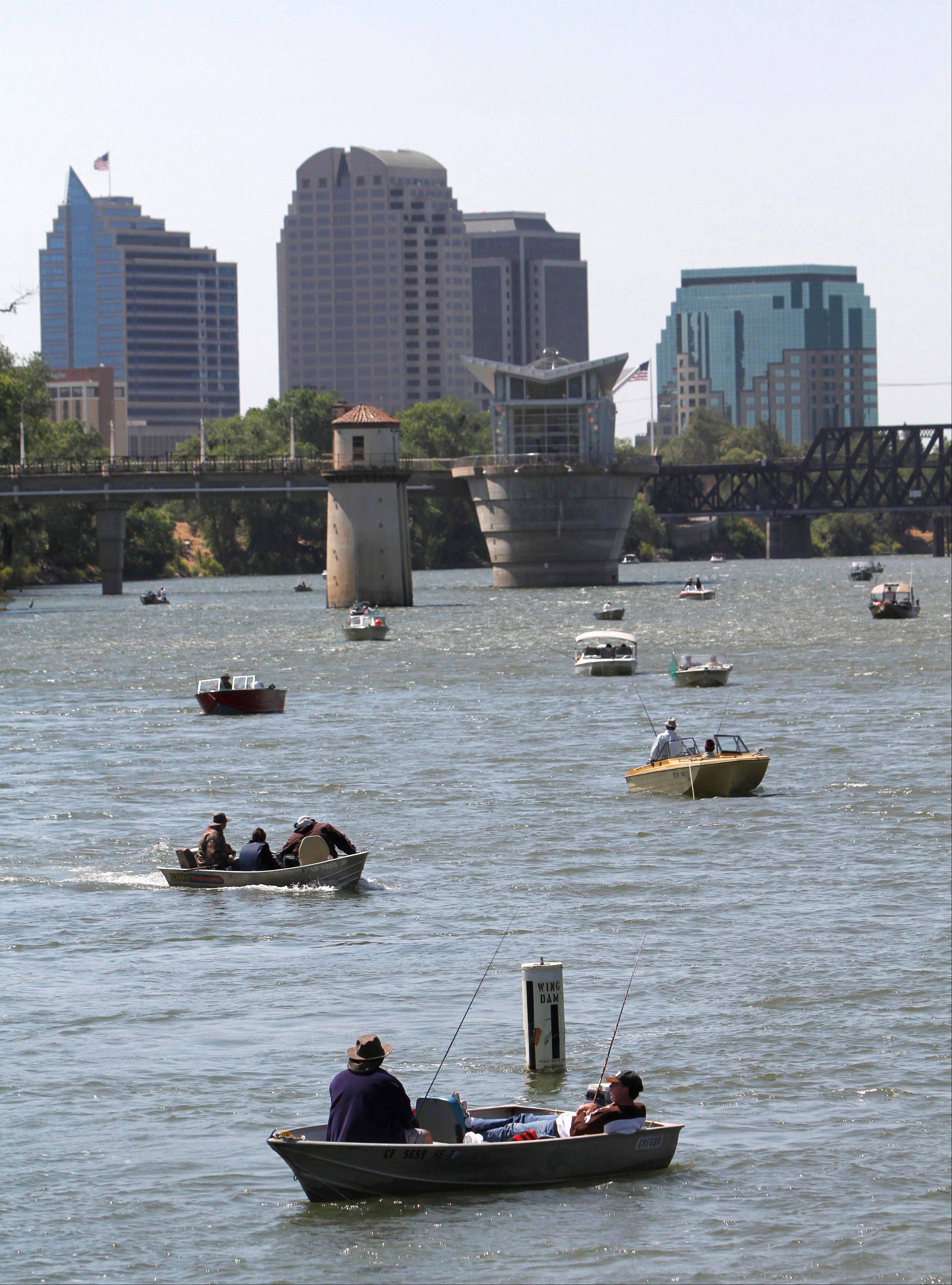 Associated Press/July 16, 2012 Men fish from boats on the first day of recreational salmon fishing in the Sacramento River near Sacramento, Calif.