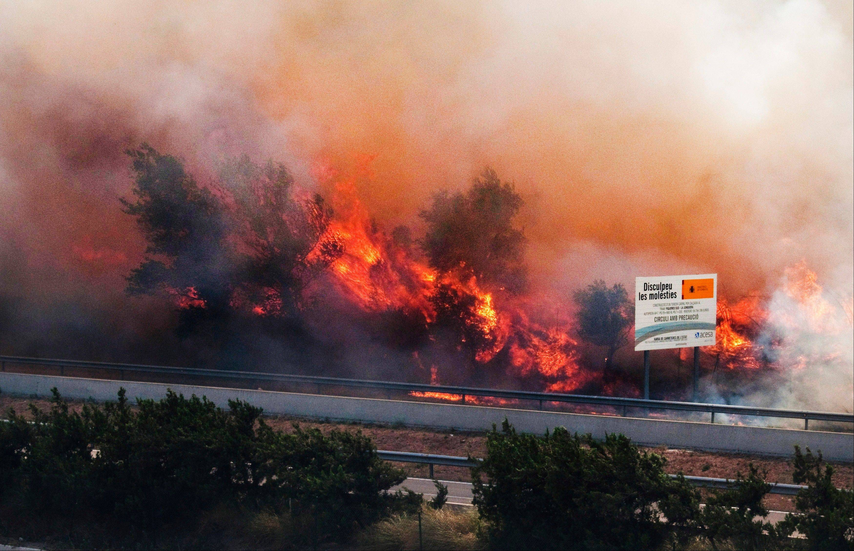 Flames ravage the forest near the highway in La Jonquera, near the border with France, Spain, Sunday.