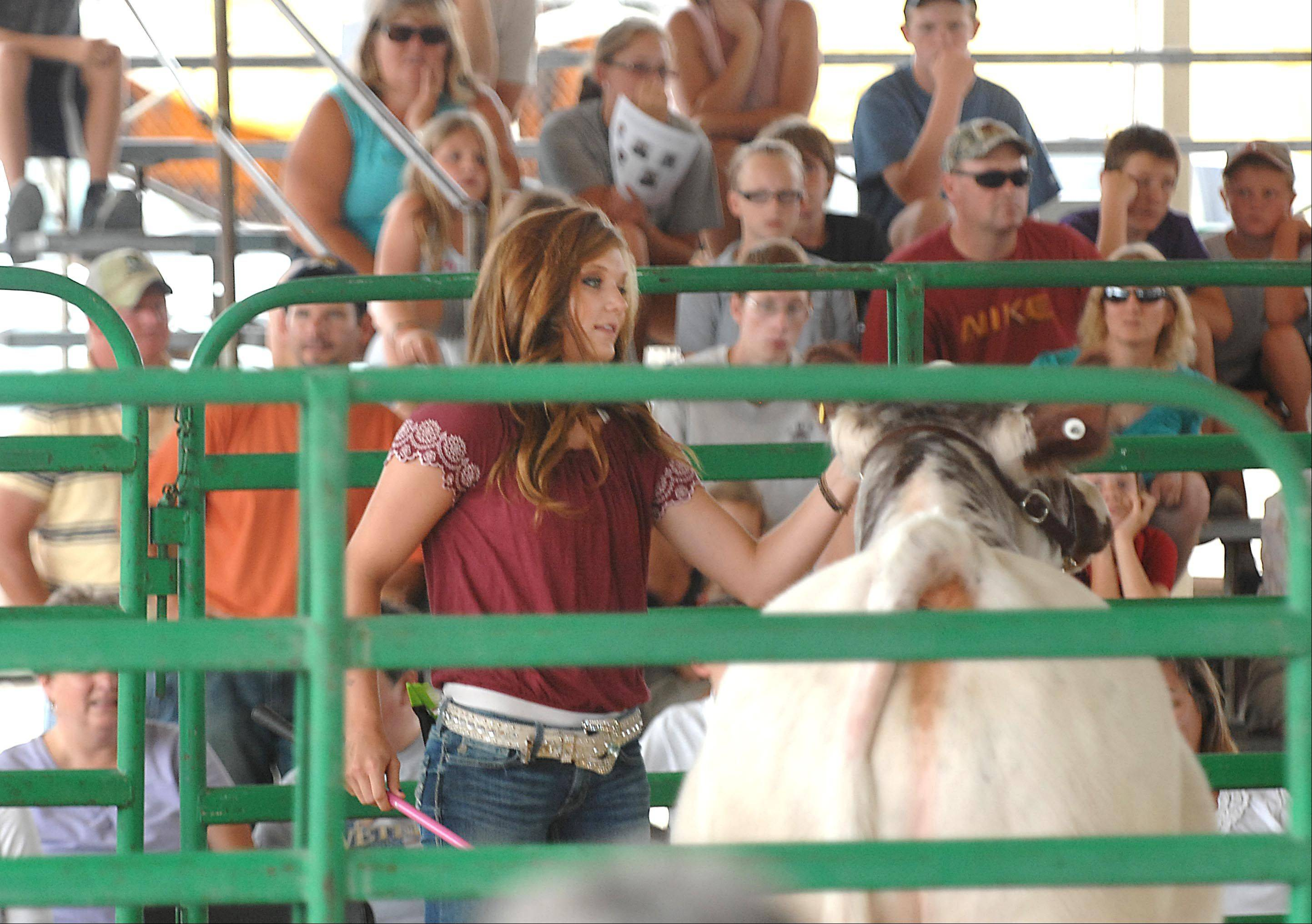Danielle Engel of Marengo and the Burlington Ag 4-H Club, shows her Reserve Grand Champion Steer at the 2012 Kane County Fair 4-H Blue Ribbon Sale Sunday in St. Charles.