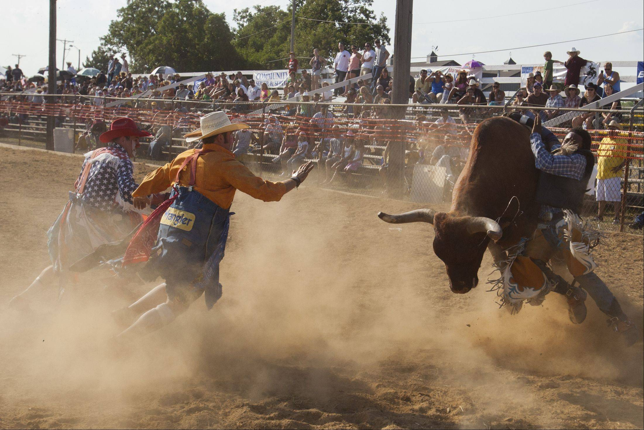 16-year-old Marcel Autman of Kankakee arm gets stuck as he is kicked of the bull, he has been riding since age 12 during the 49th IPRA Championship Rodeo at Golden Oaks Rodeo Grounds hosted by the Wauconda Chamber of Commerce.