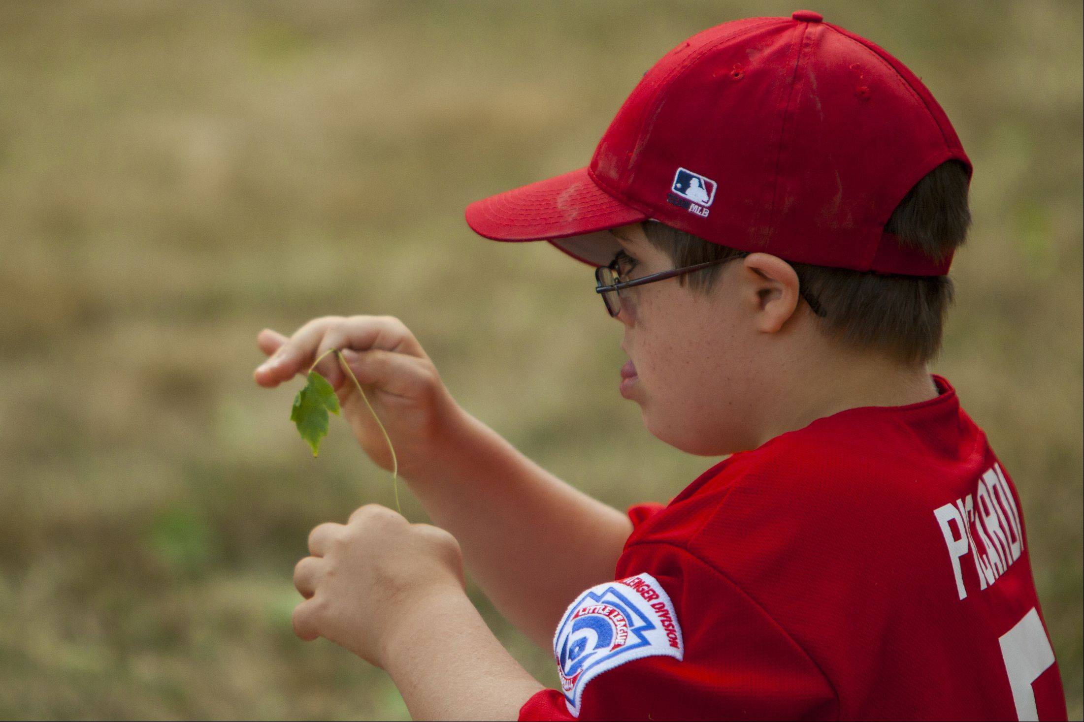 Joe Picardi plays with a piece of grass during the Bartlett Little League Challenger Division end-of-year party and trophy presentation.