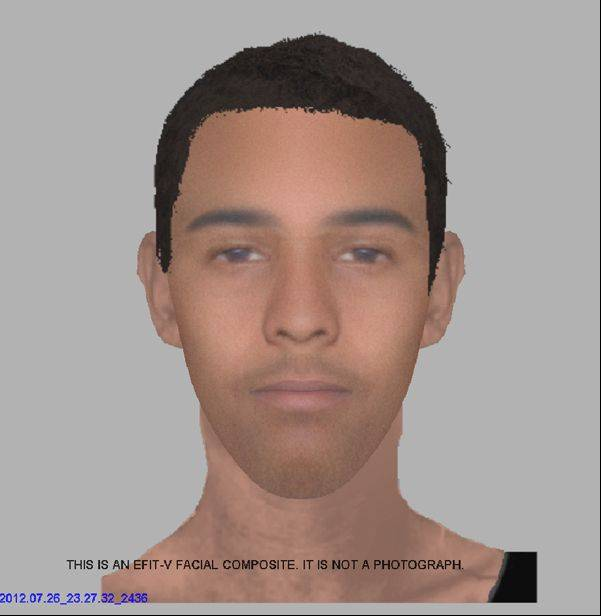 Schaumburg police composite sketch of suspect in attack on a female jogger.