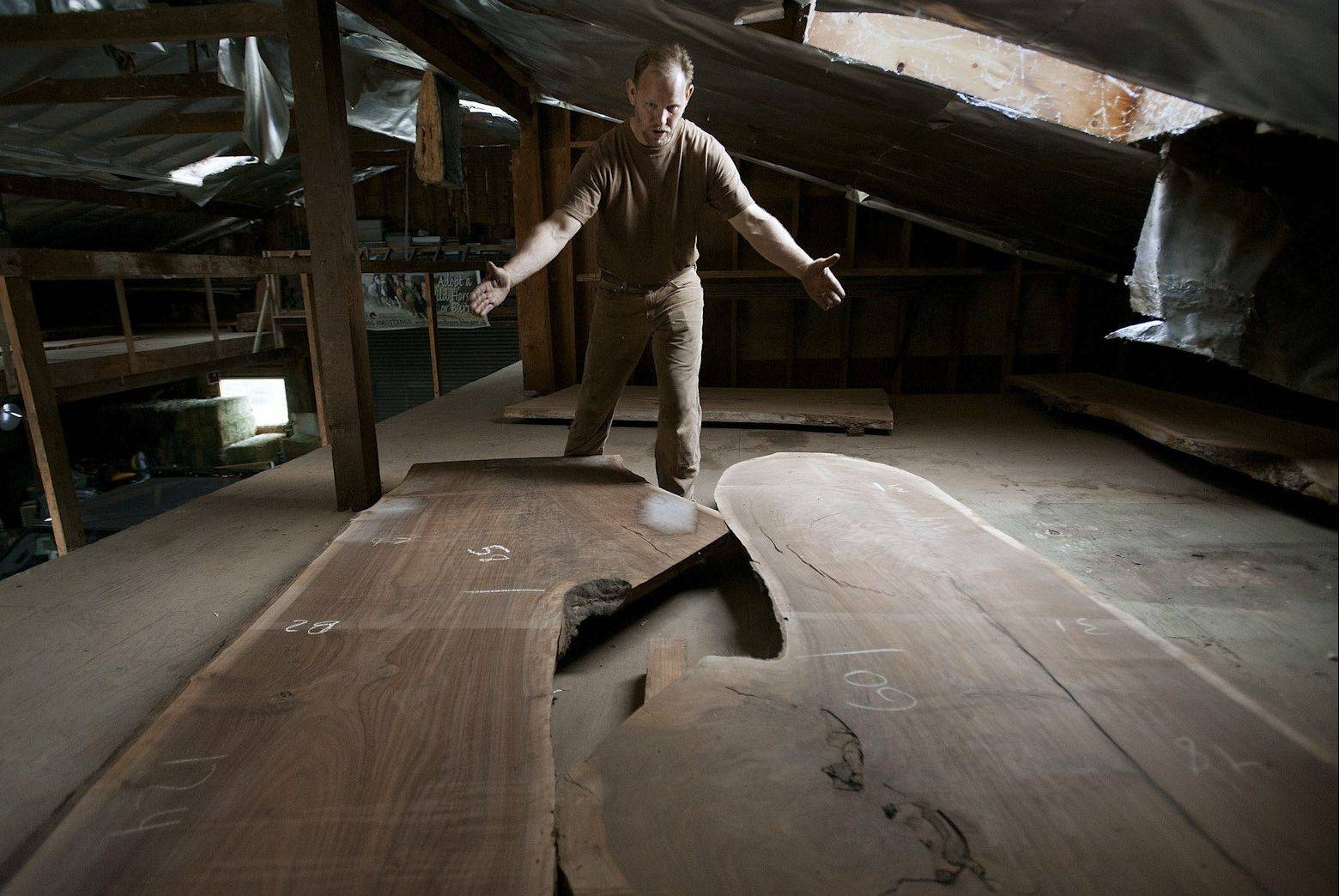 Clark Kayler examines large pieces of wood drying at his home.