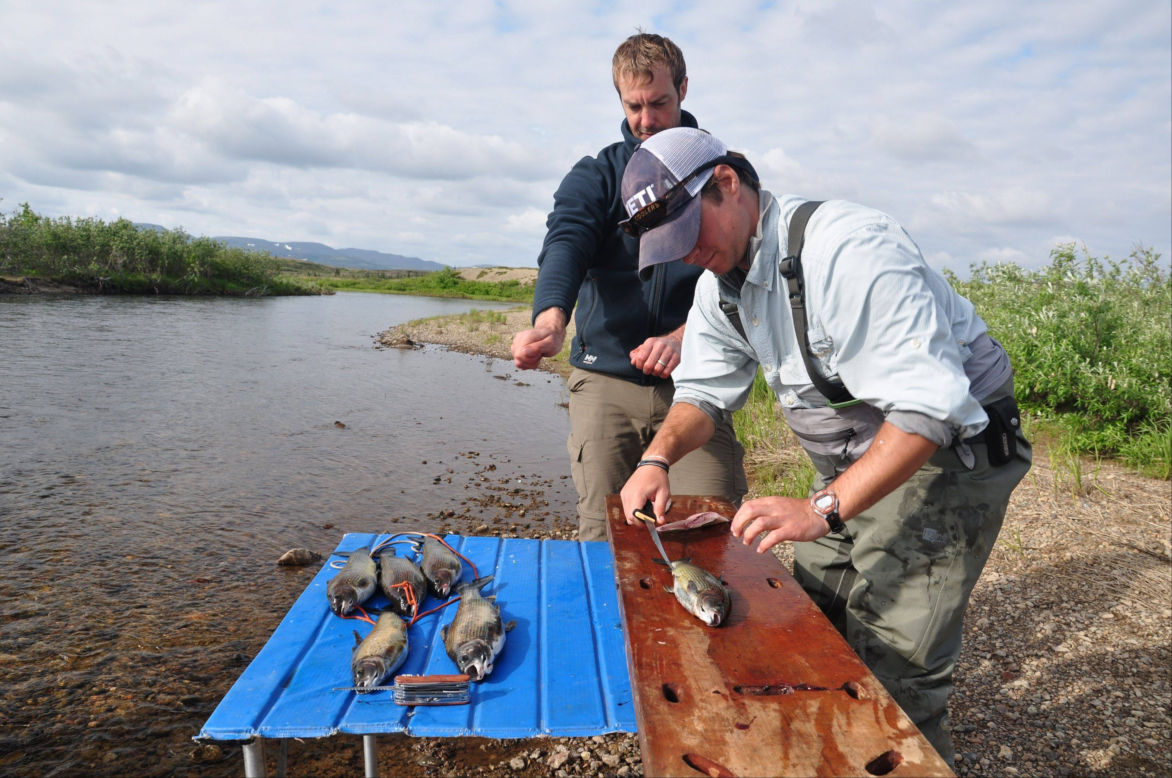 In this publicity photo provided by Wild River Fishing Guides Company, chef and seafood sustainability advocate, Barton Seaver, trains guide, Oliver Merrill, right, to maximize yield at the Stuyahok River, in southwestern, Alaska.