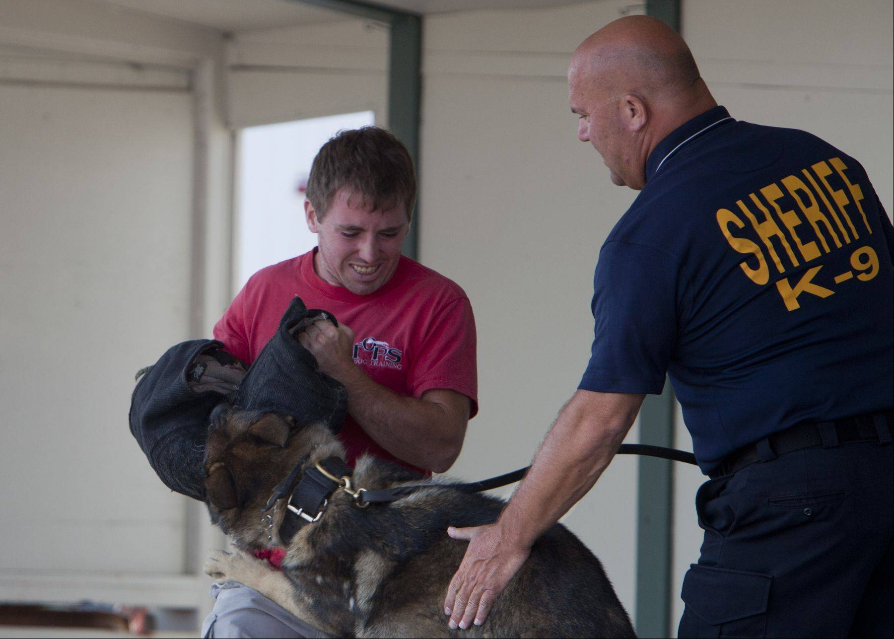 Lake County Sherif K-9 Officer Tony Fanella pats Thor on the back to stop his attack on Derek Collins of Grayslake during a police dog demonstration at the Lake County Fair on Saturday.