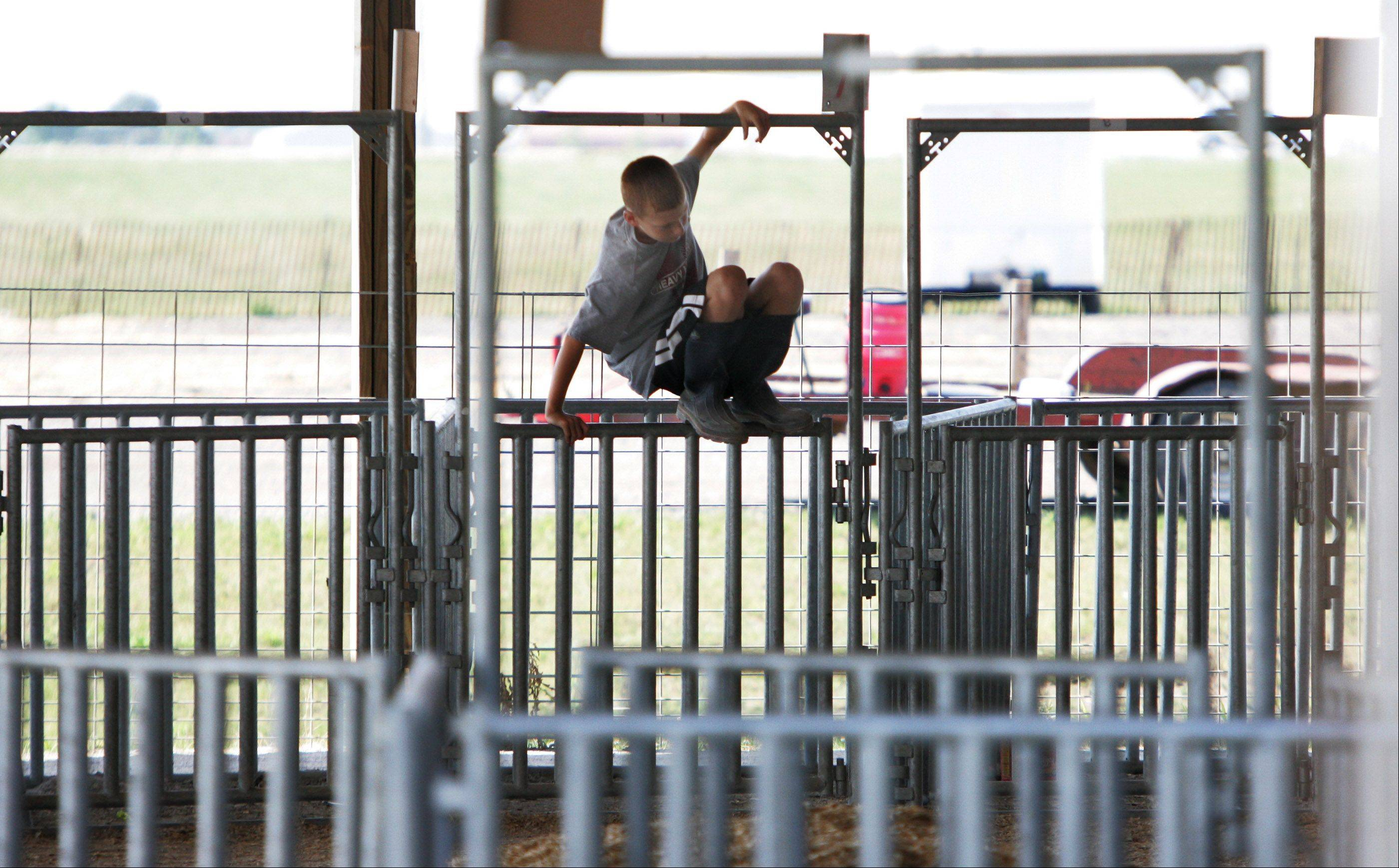 Eleven-year-old Matthew Gaines, of Libertyville, hangs around the livestock stalls during last day of the 84th Annual Lake County Fair Sunday in Grayslake.
