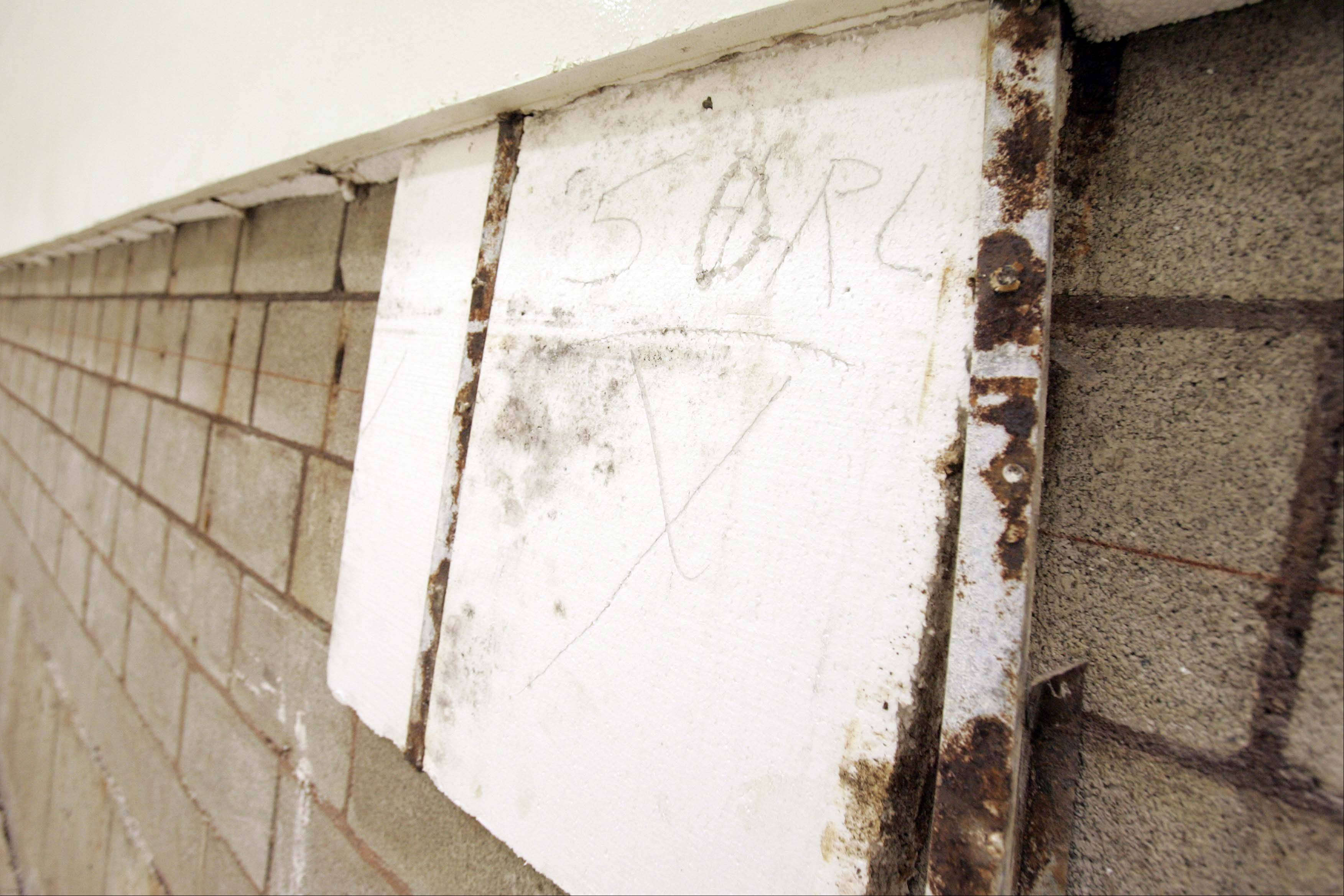 Mold was found in the north wall of racquetball court 3 at the Norris Recreation Center in St. Charles.