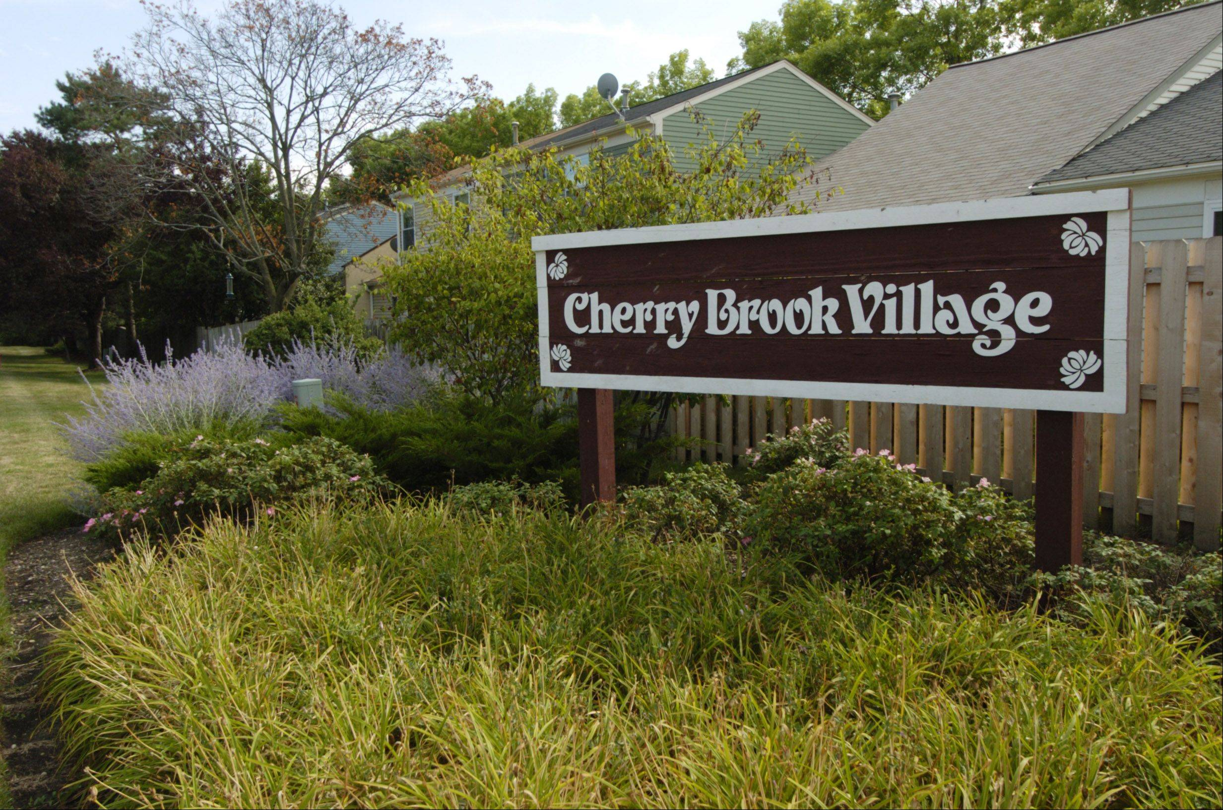 CherryBrook Village in Palatine was built in the mid-1980s.