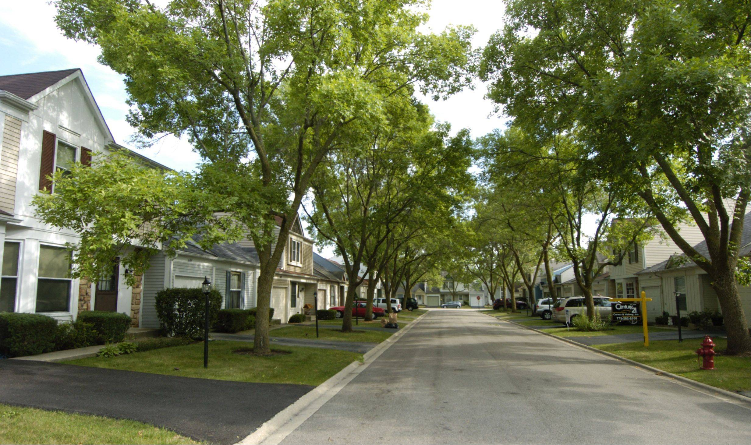 The quaint and cozy CherryBrook Village neighborhood is located off Dundee Road in Palatine.