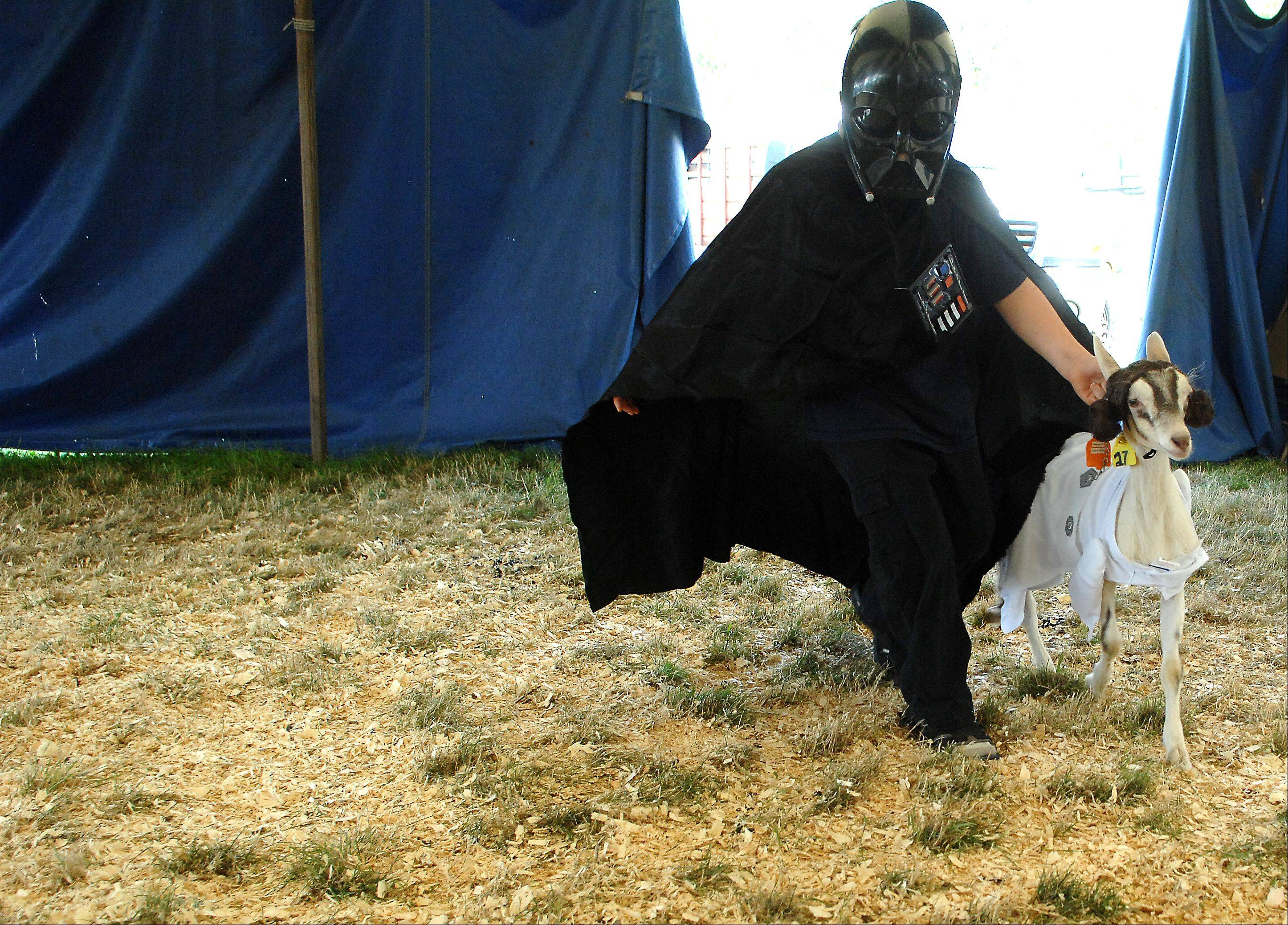Braydin Winn, 7, of Harvard shows off his Darth Vader costume and his Princess Leia goat during the goat costume show at the McHenry County Fair in Woodstock Thursday.