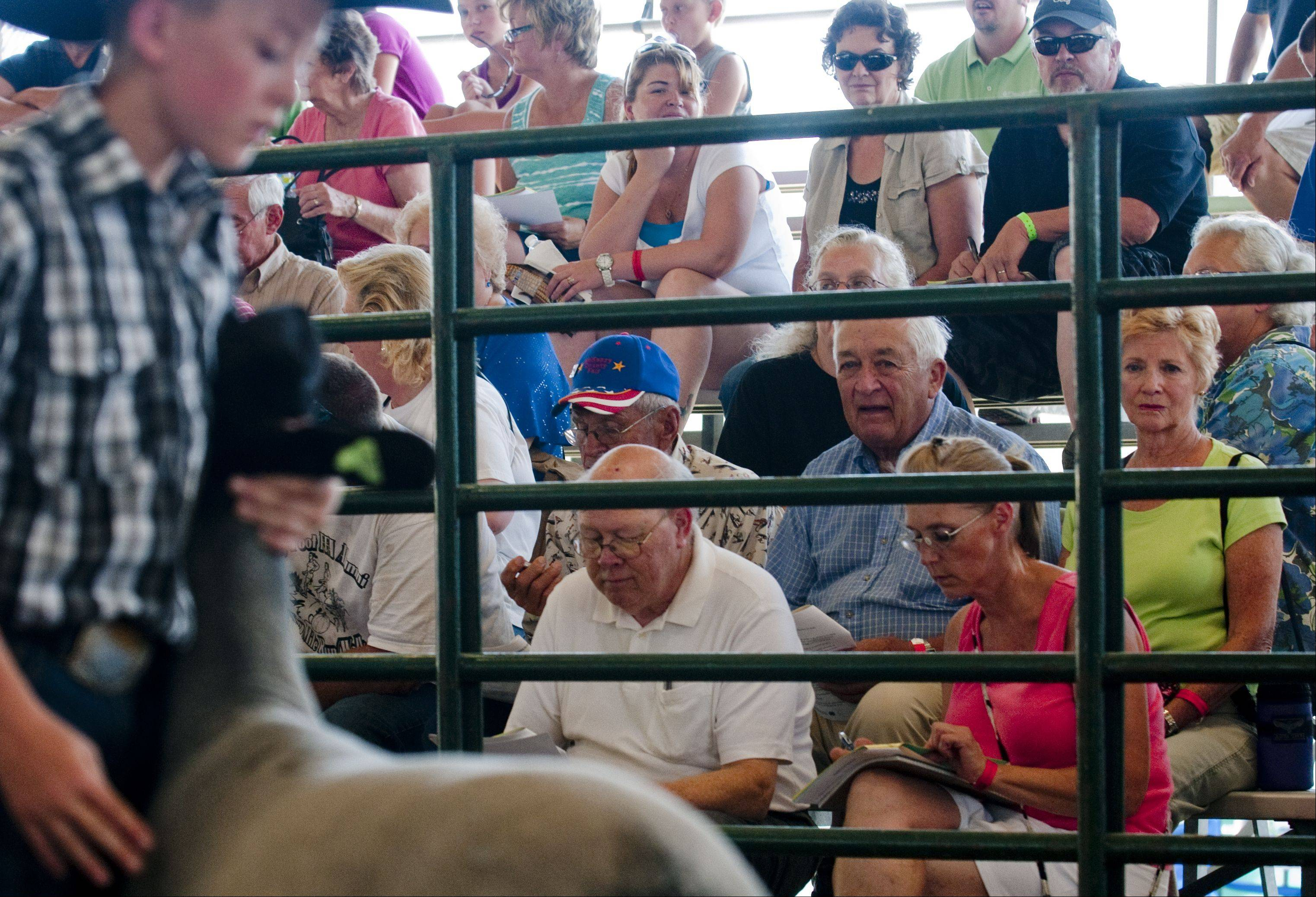 Bidders fill the stands of the Hansen Pavilion for the 4-H Livestock Auction and Sale of Champions at the McHenry County Fair in Woodstock Saturday.