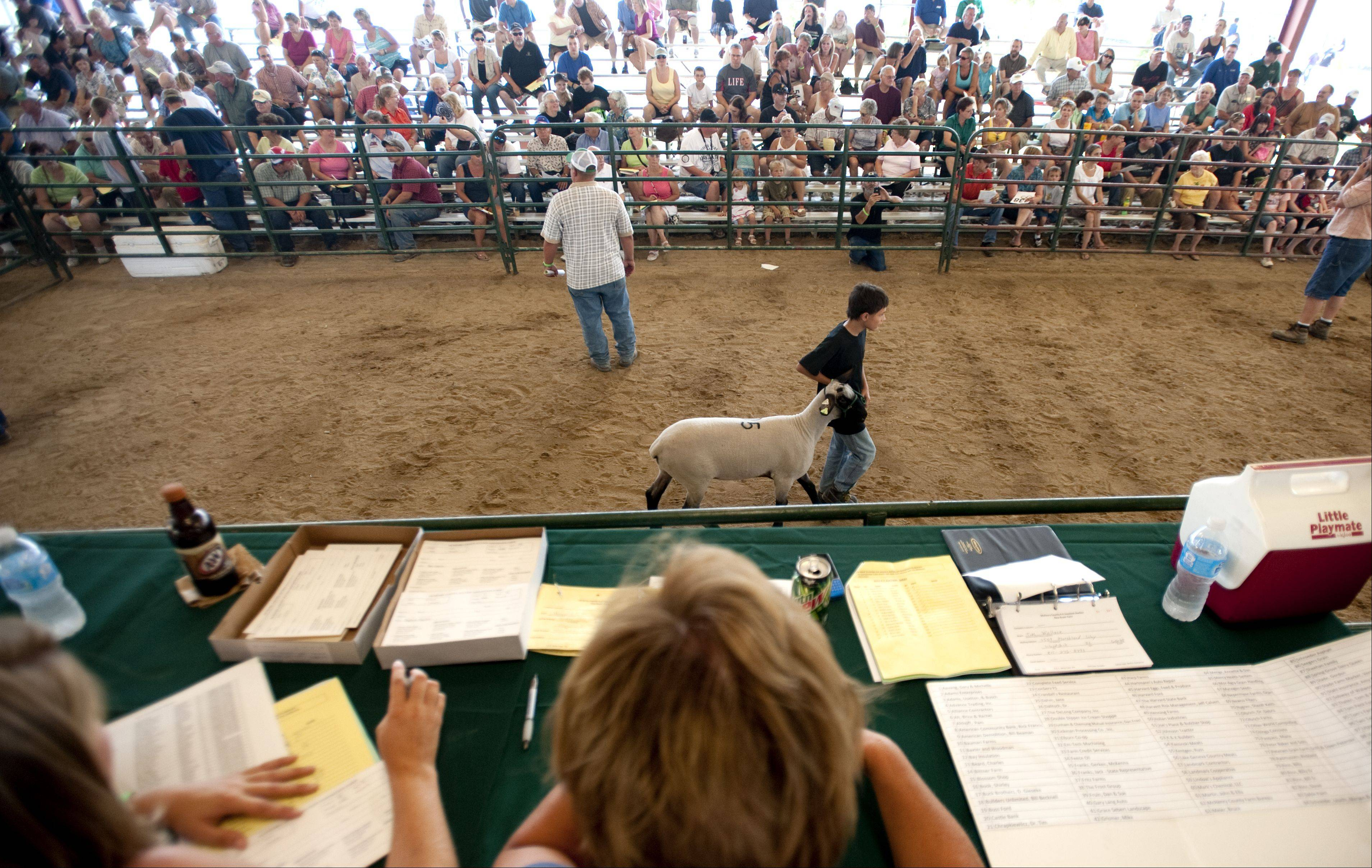 Presenters at the 4-H Livestock Auction and Sale of Champions showed off their livestock in the Hansen Pavilion Saturday at the McHenry County Fair in Woodstock. Many visitors who won bids donated their prizes to local businesses.