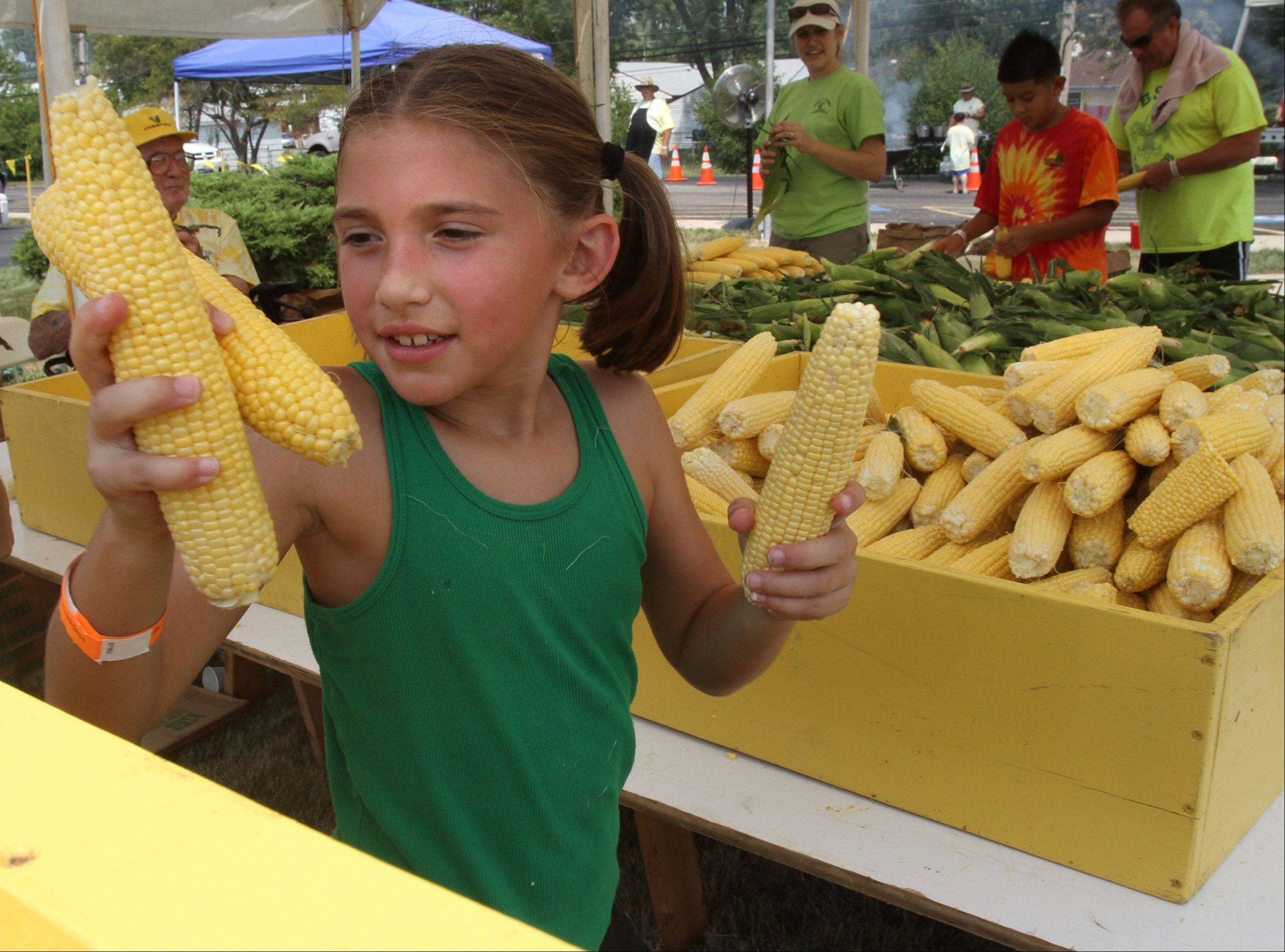 Shelby Paluch, 8, of Rolling Meadows, help husk and sort corn during Community Church of Rolling Meadows 56th Annual Cornfest Saturday.