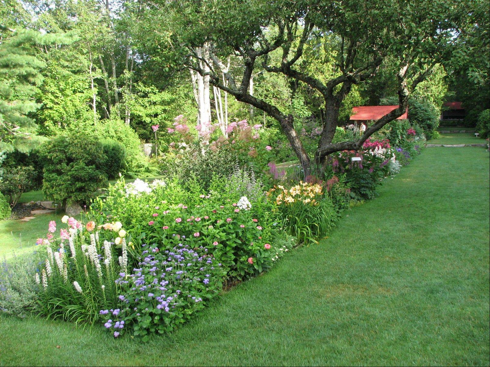 The collection at Thuya Garden in Northeast Harbor, Maine, includes plants from renowned landscape designer Beatrix Farrand, who created the nearby Abby Aldrich Rockefeller Garden, a privately owned garden that's open to the public just a few days a year.