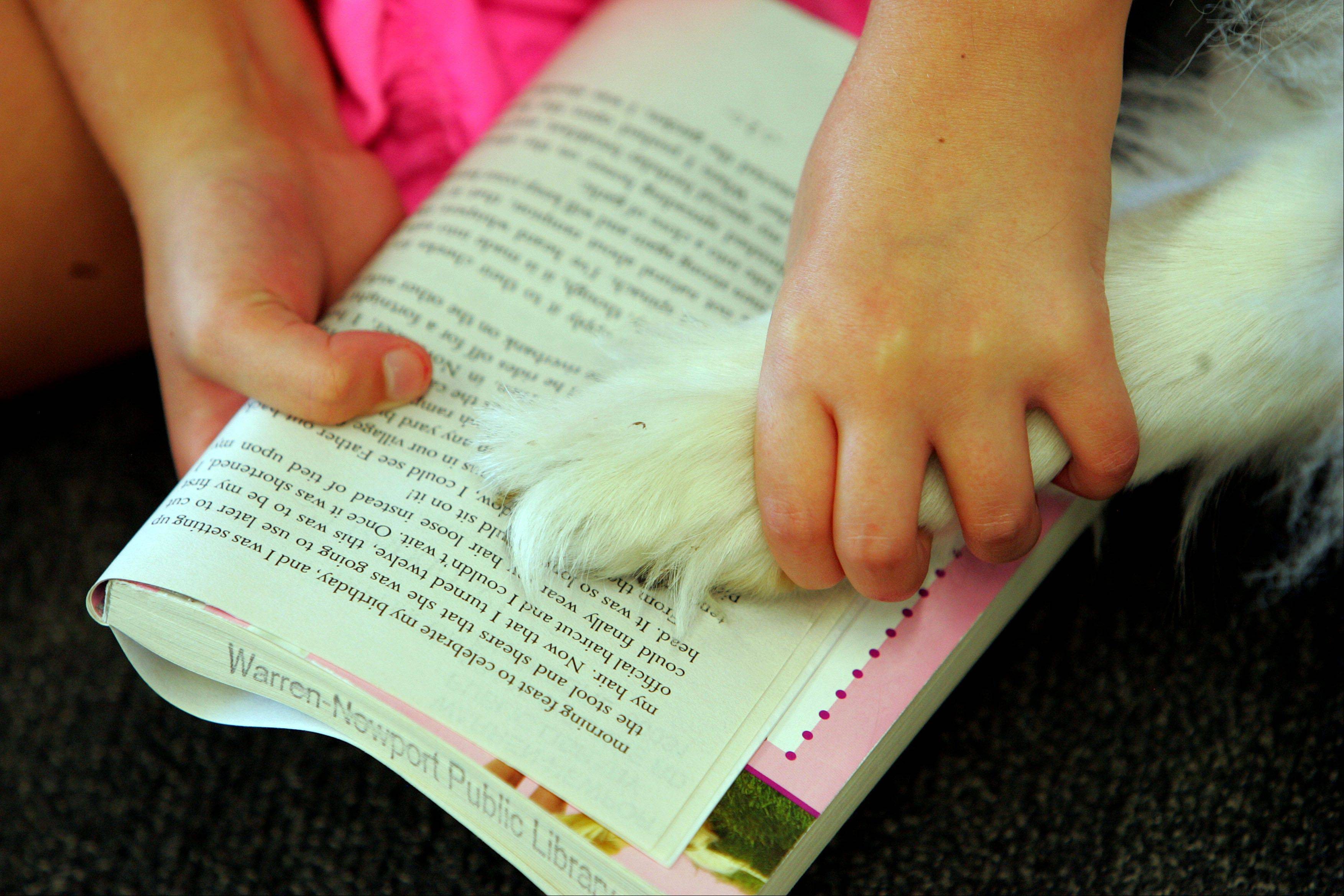 9-year-old Gena Foltz of Wadsworth uses the paw of collie named Rhett as a bookmark during a program called Read Books to Bowser at Warren-Newport Public Library in Gurnee Monday evening. Dogs from Rainbow Animal Assisted Therapy were on hand for the program. Reading books to therapy dogs improves a child's reading skills and builds confidence.