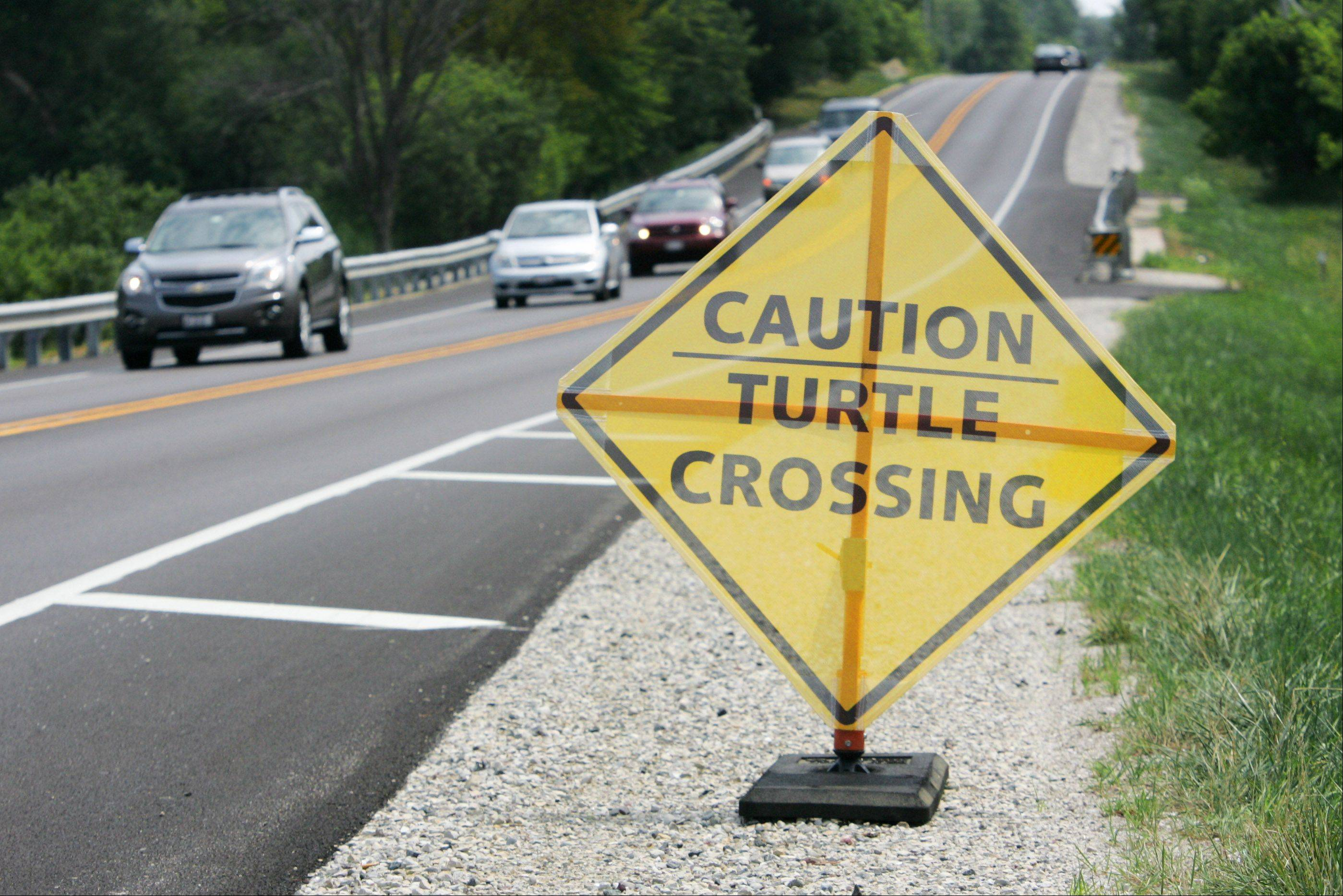 Due to recent efforts by concerned Lake County Wildlife Biologist Gary Glowacki, turtle crossing signs have been placed near Cuba Marsh along Ela Road in Lake Zurich.