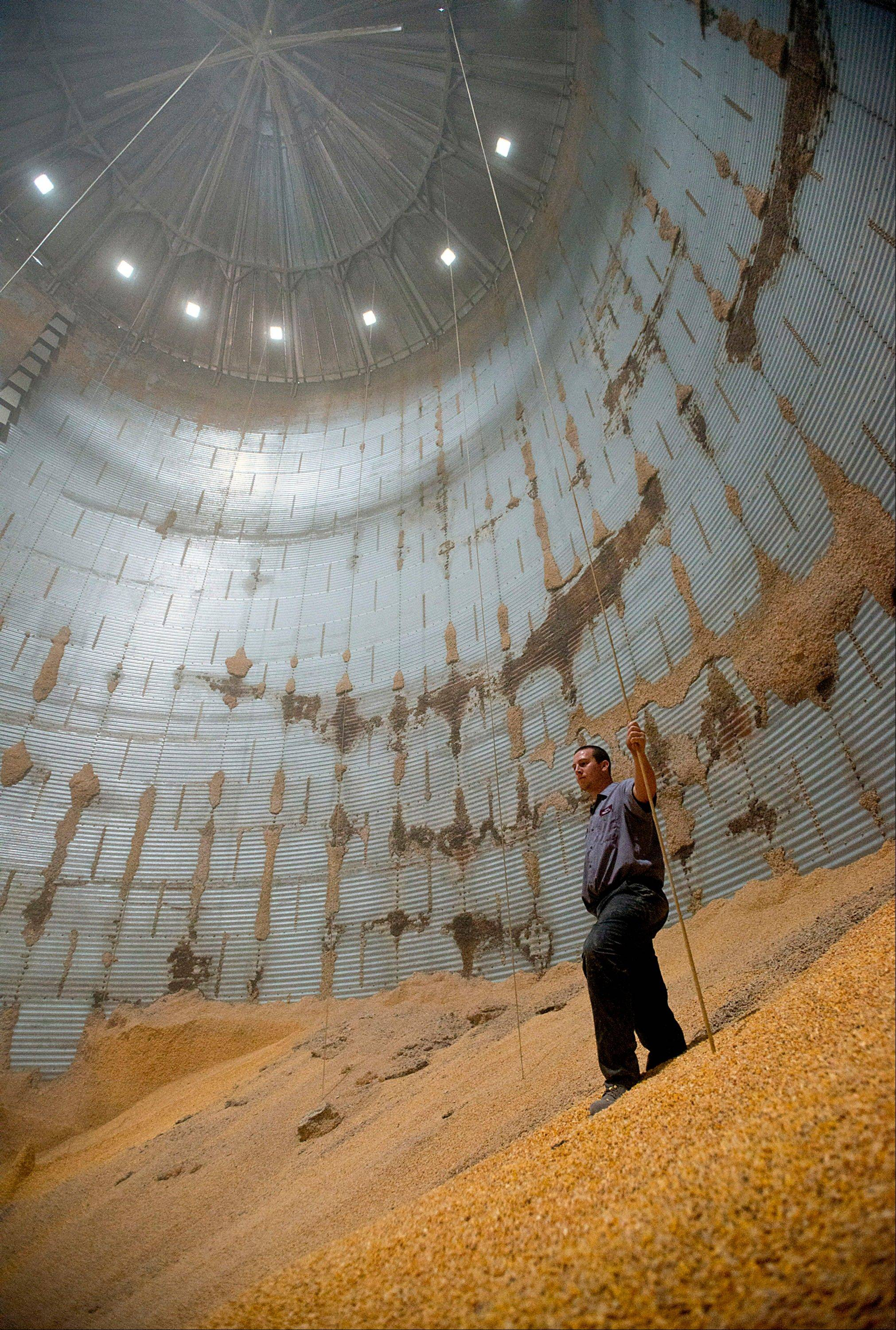 An employee stands inside a grain bin Thursday at Kahle Supply and Feed Mill Inc.'s facility in Kalida, Ohio.