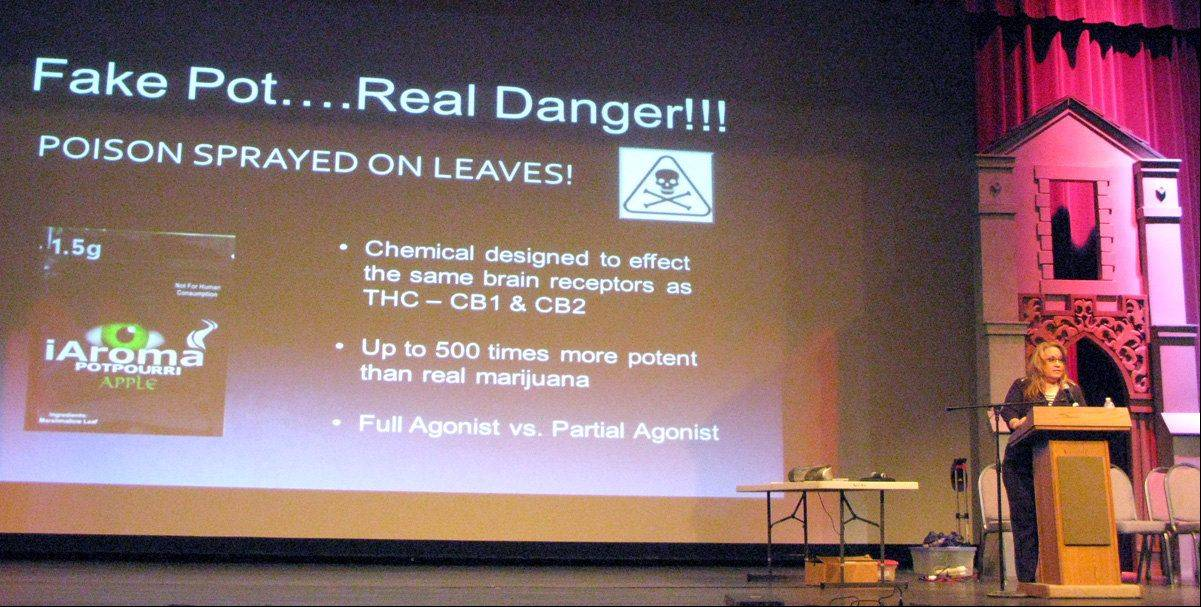 Karen Dobner speaks at an April forum in St. Charles, describing how she lost her son, Max, after he drove his car at 100 mph through the front of a house following experimentation with synthetic marijuana.