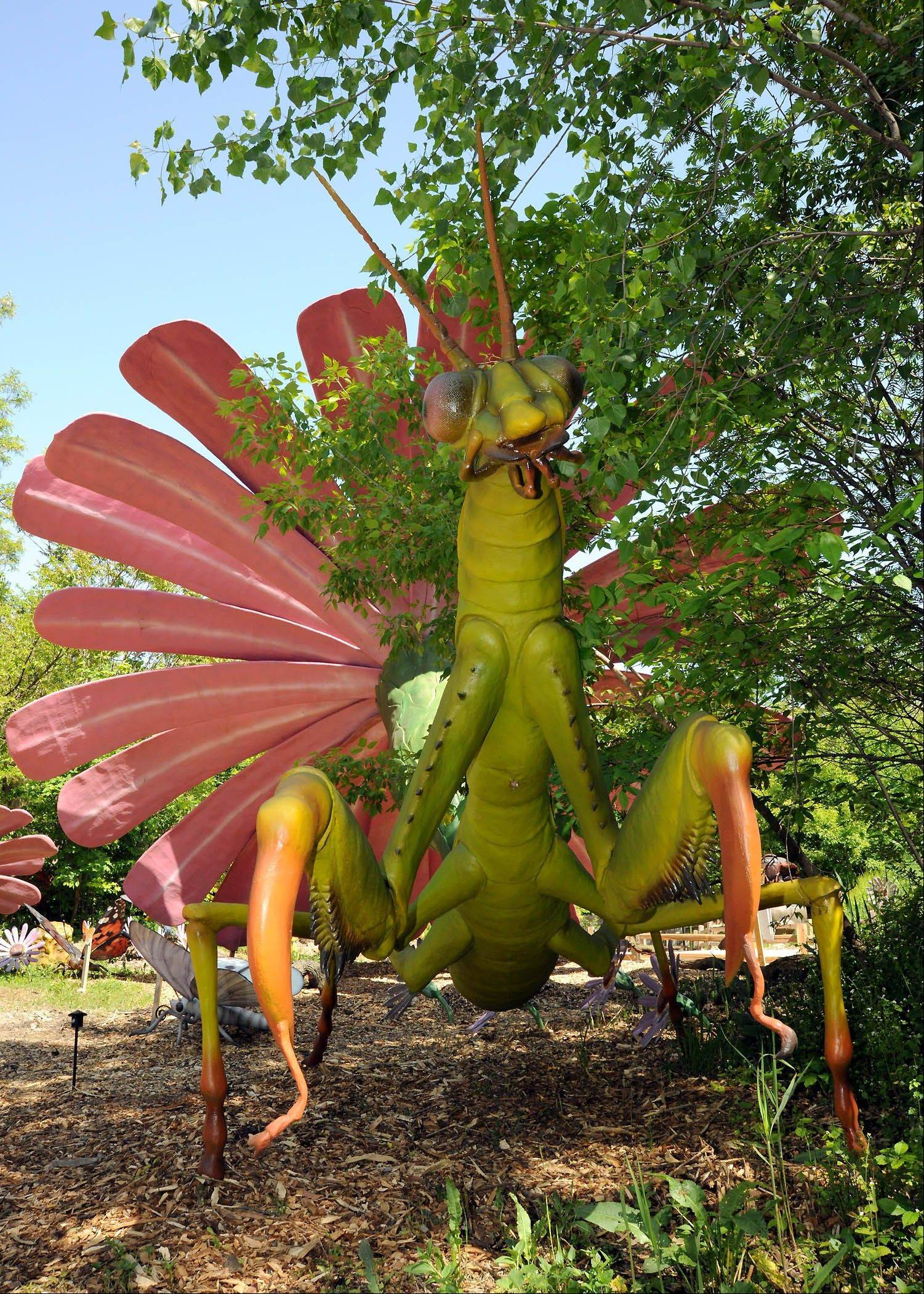 "Brookfield Zoo's ""Xtreme Bugs"" exhibit features more than 20 oversized animatronic bugs, including a praying mantis"