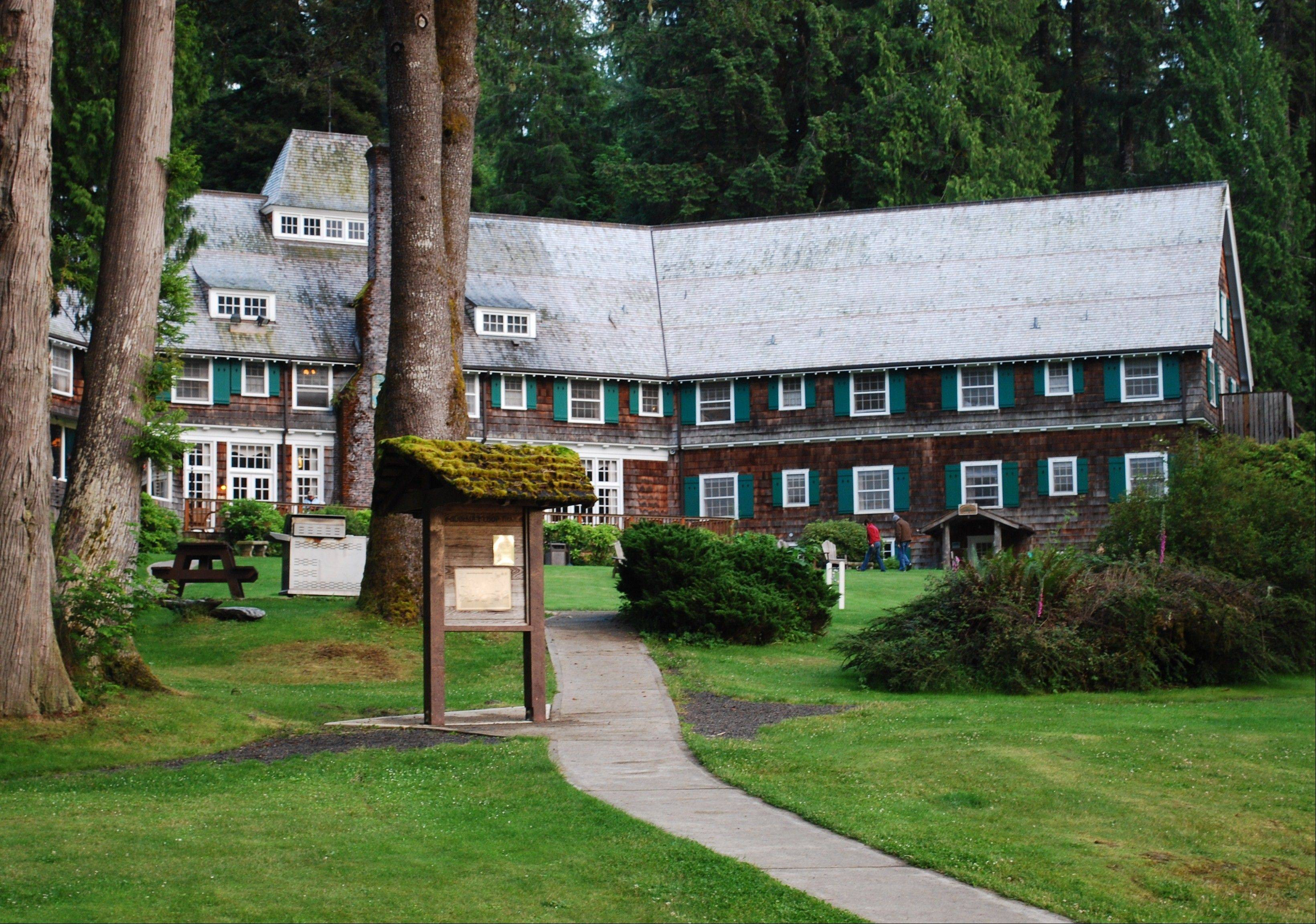 Lake Quinault Lodge and the surrounding rain forest offer rich birding opportunities. The author saw his first evening grosbeak at the lodge.