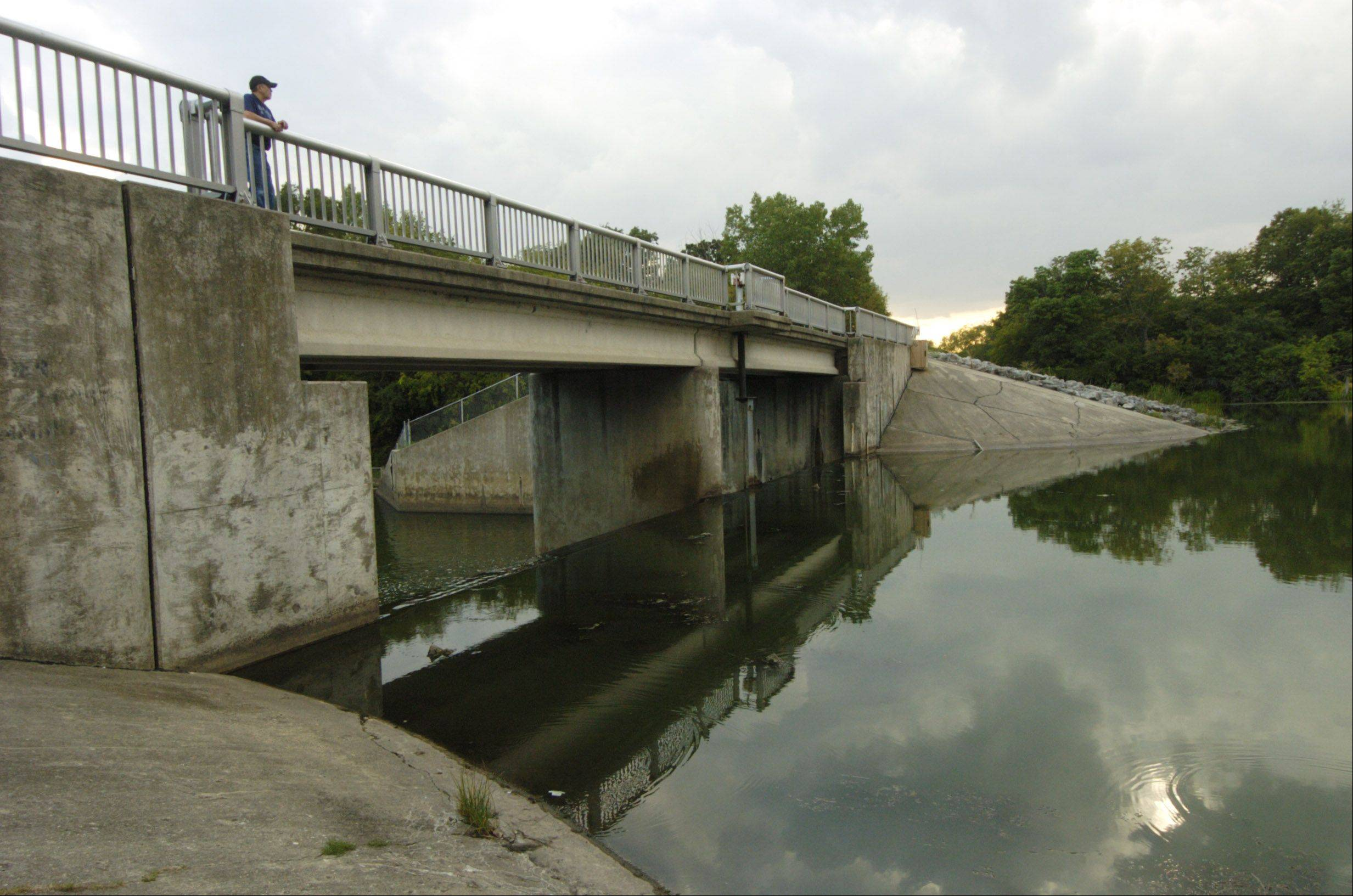 View of the main dam at Busse Woods near Elk Grove Village.