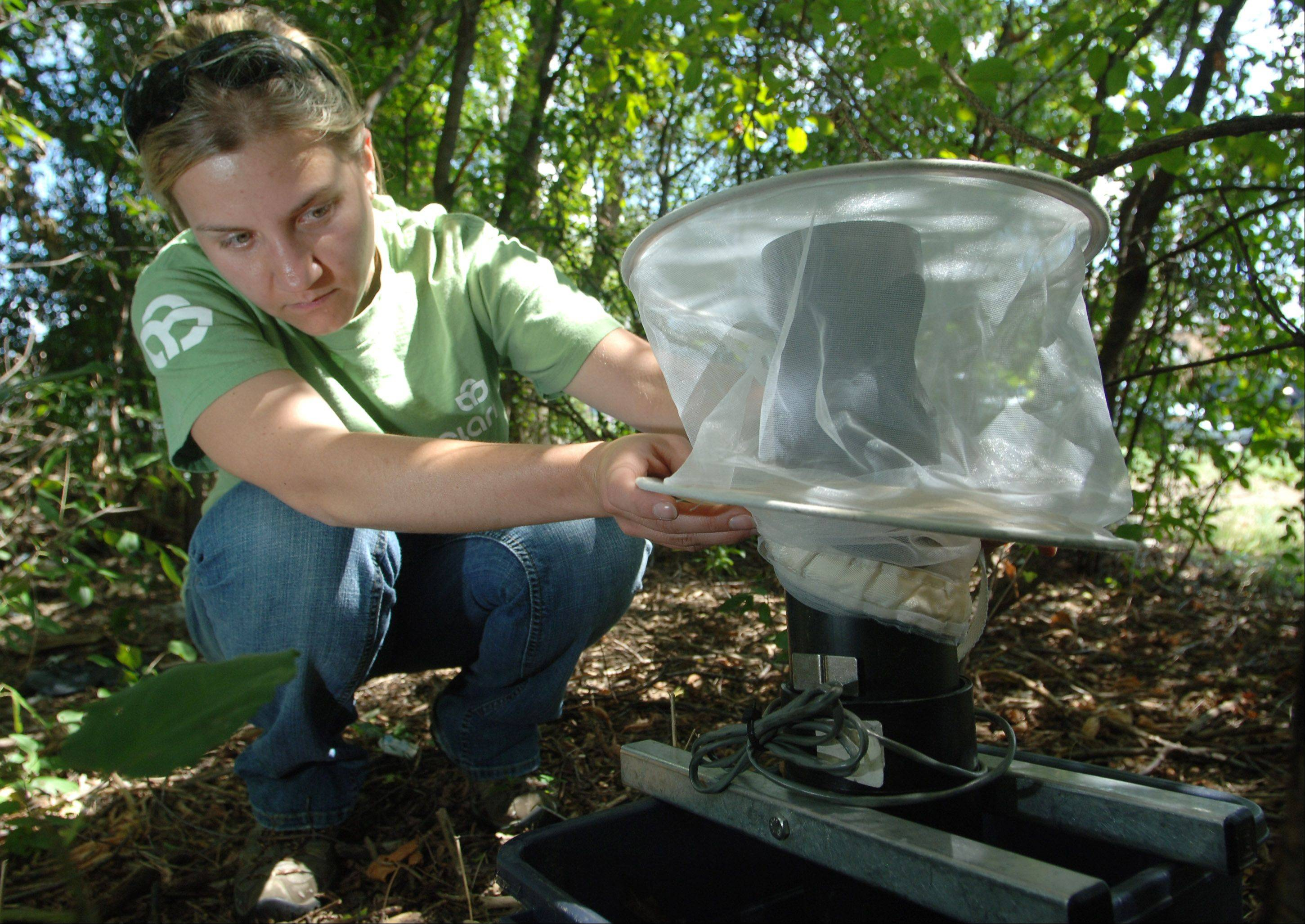 Clarke lab supervisor Lauren Lavezzi sets a West Nile virus mosquito trap near Mundelein's village hall Wednesday afternoon.