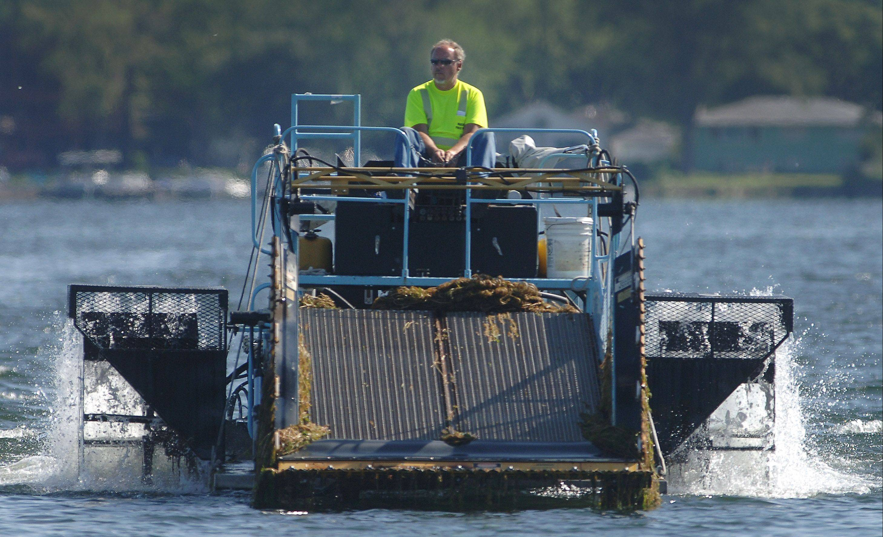 Bob Garrod of the Wauconda Public Works Department operates the aquatic plant harvester on Bangs Lake in late May.